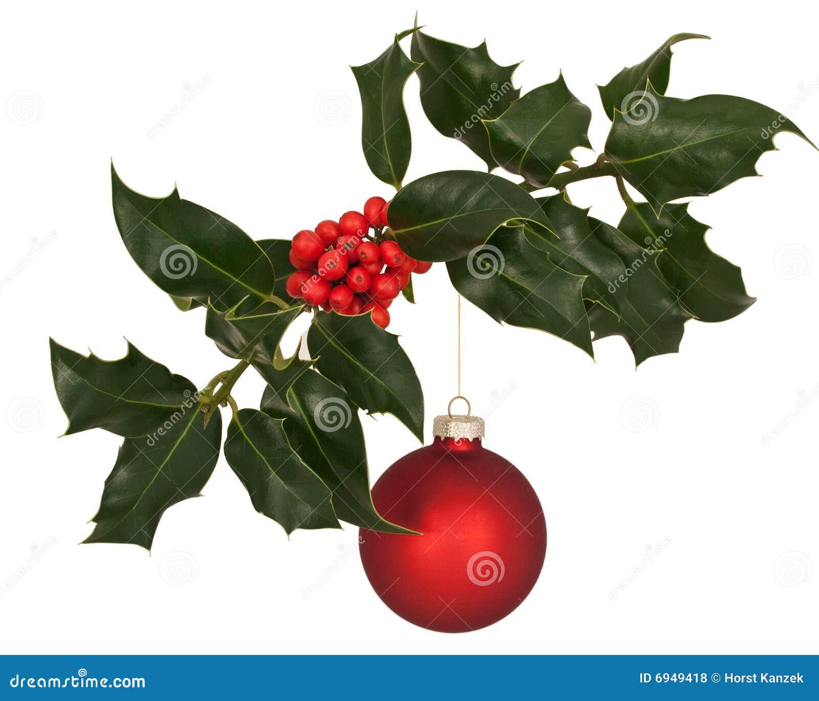 De tak van de hulst met de decoratie van kerstmis royalty vrije stock foto 39 s afbeelding 6949418 - Decoratie van de kamers van de meiden ...