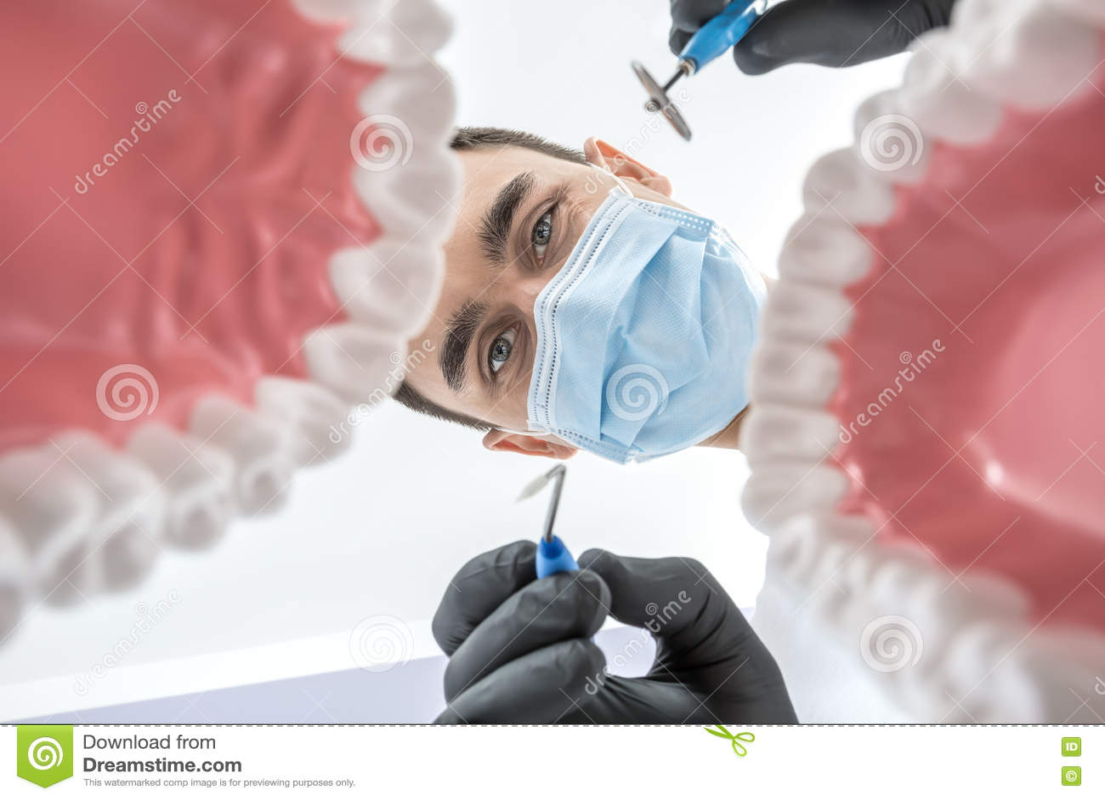 De tandarts kijkt door kaakmodellen
