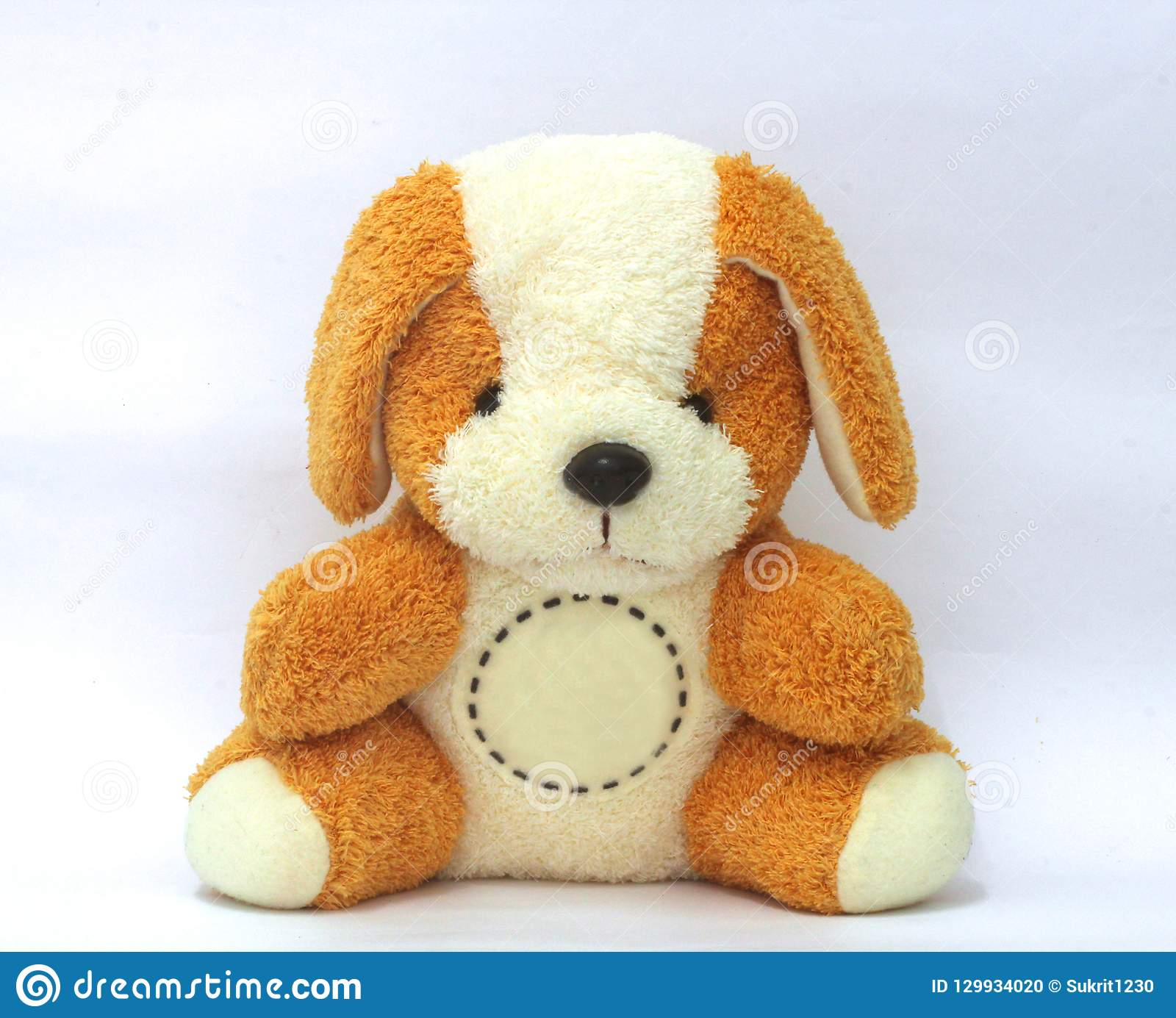 De teddybeer is bruin en wit, leuk en recht met een cirkel voor het bericht