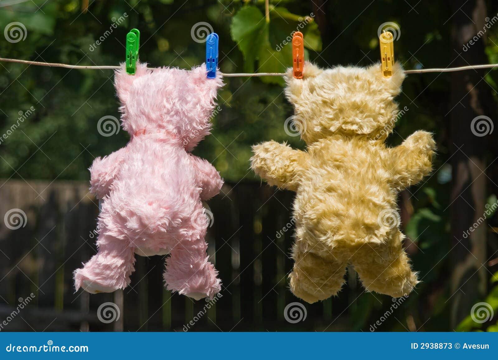 De teddyberen steunen mening