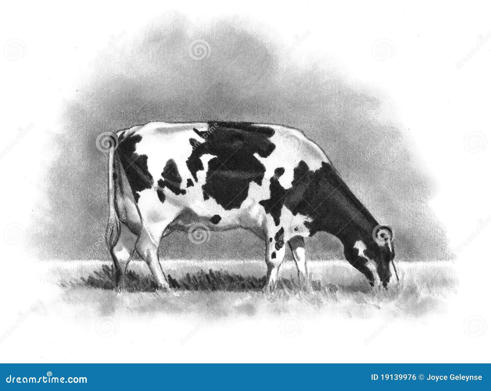 De Tekening van het potlood van het Weiden van de Koe van Holstein