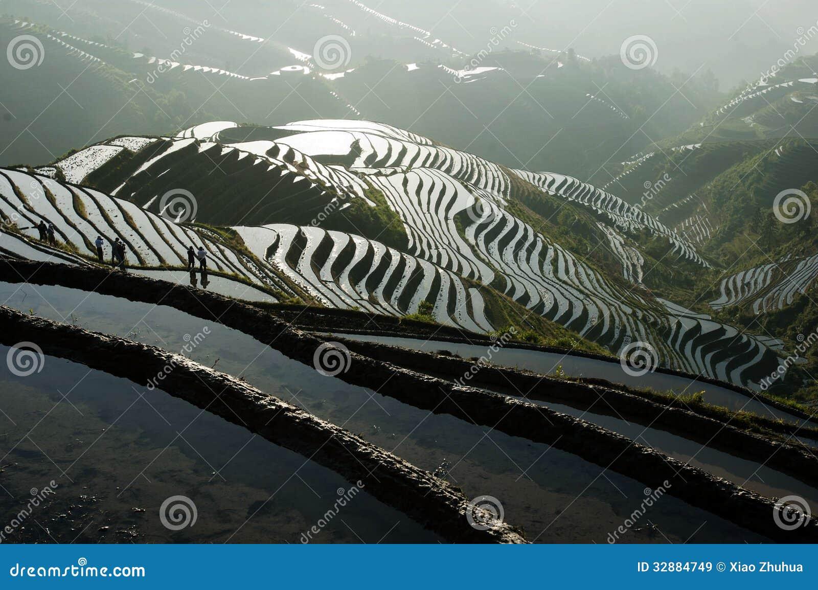De terrassen van de de backbonerijst van de draak royalty vrije stock afbeeldingen beeld 32884749 - Afbeeldingen van terrassen verwachten ...