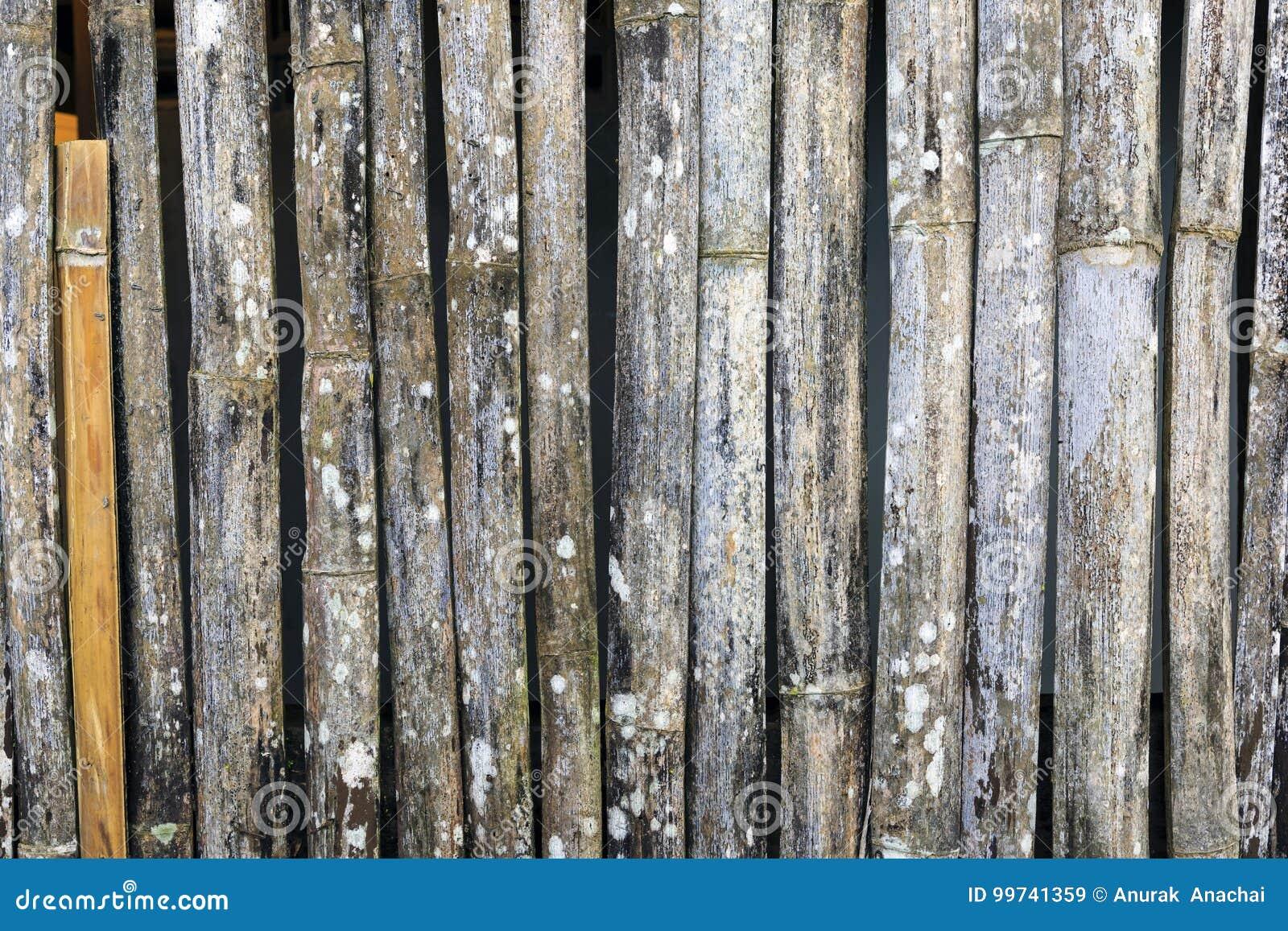 De textuurachtergrond van het bamboe