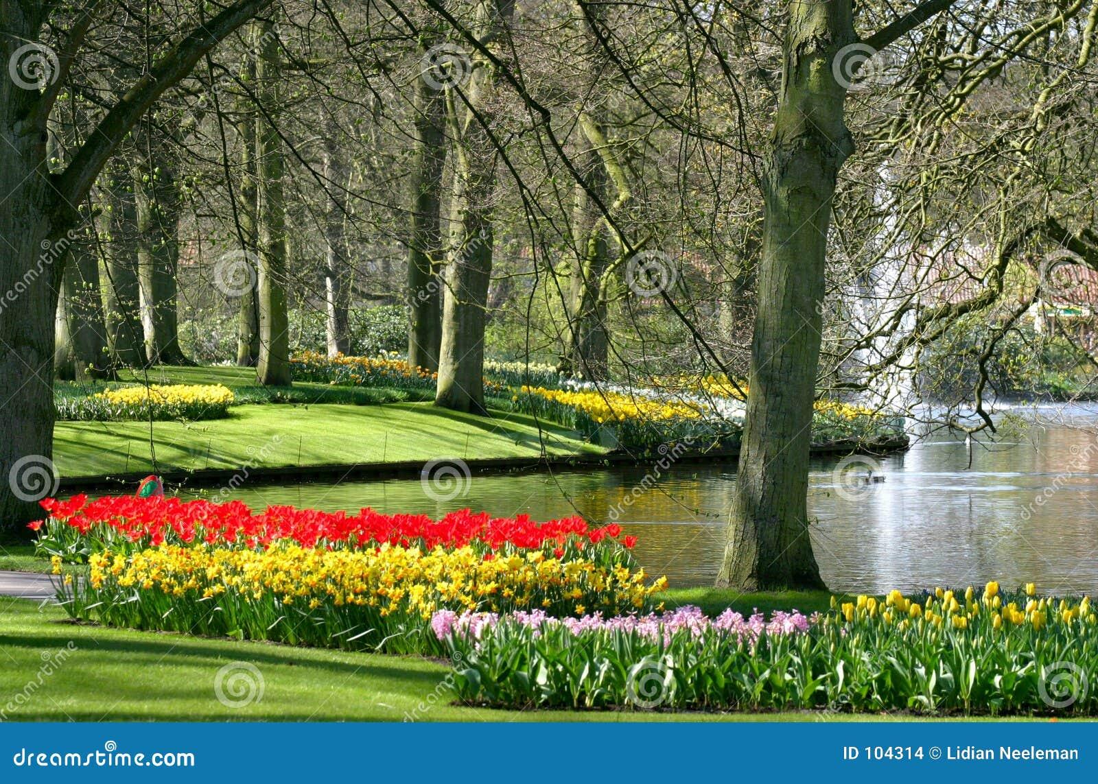 De tijd van de lente in park