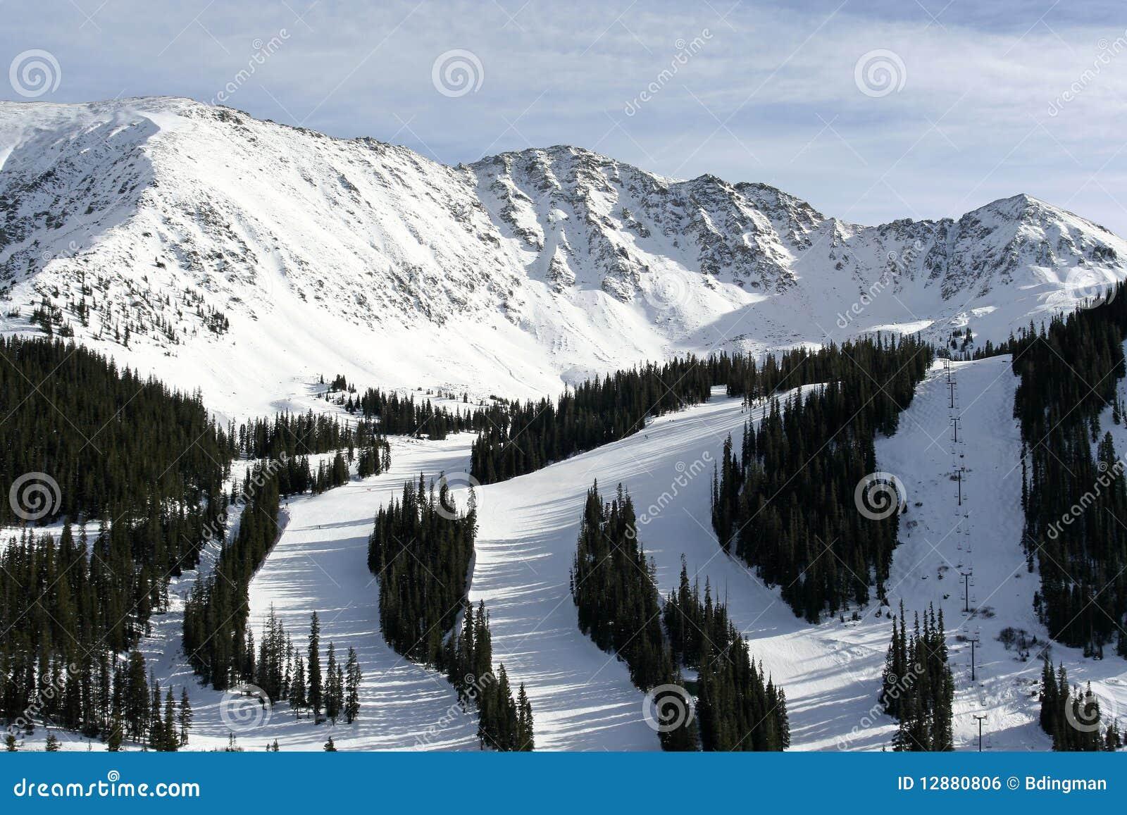 De Toevlucht van de Ski van het Bassin van Arapahoe