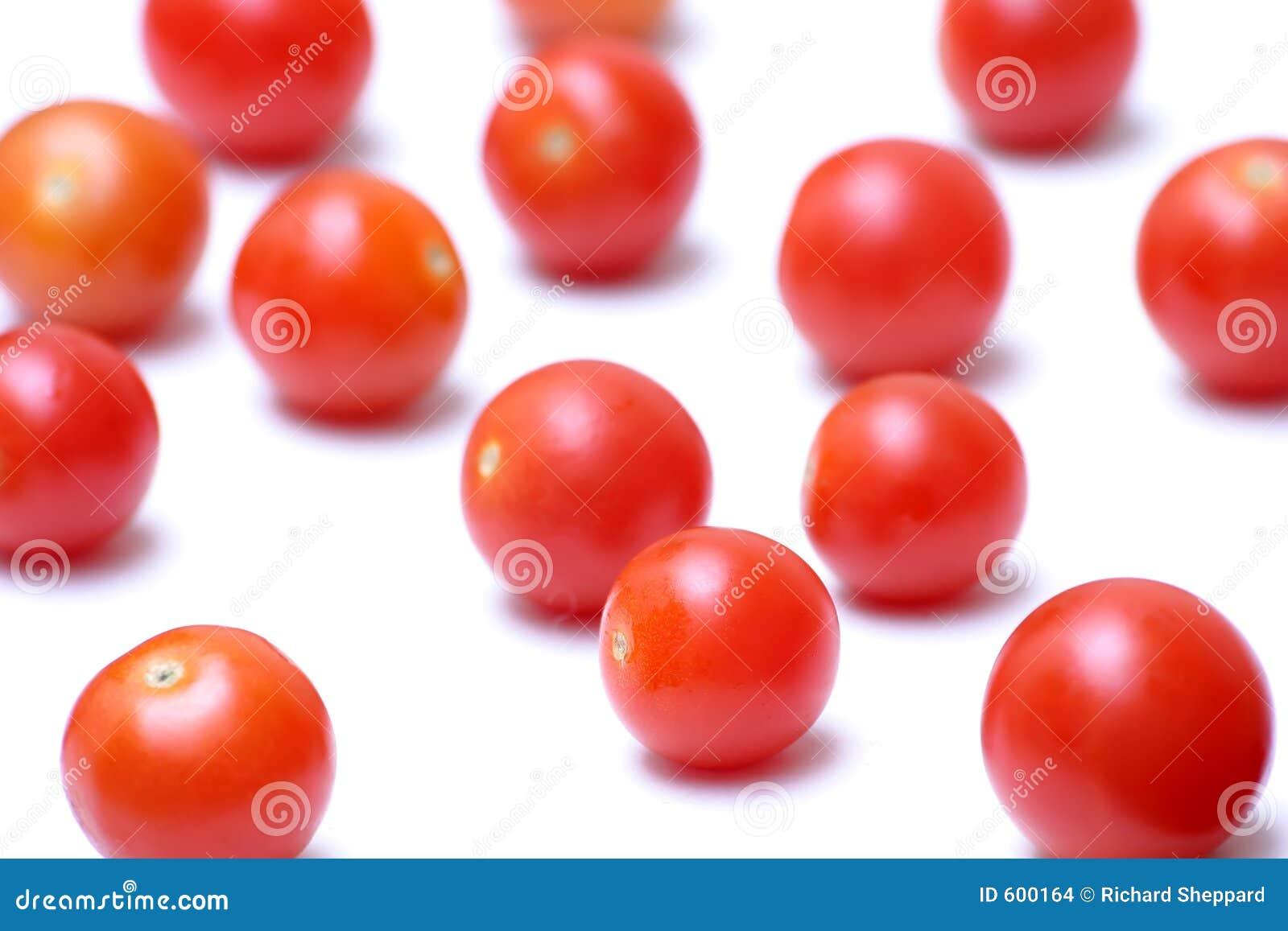 De tomaten van de kers