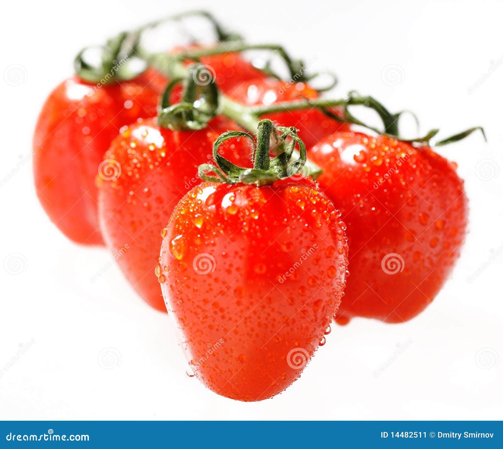 De tomatentak van de kers