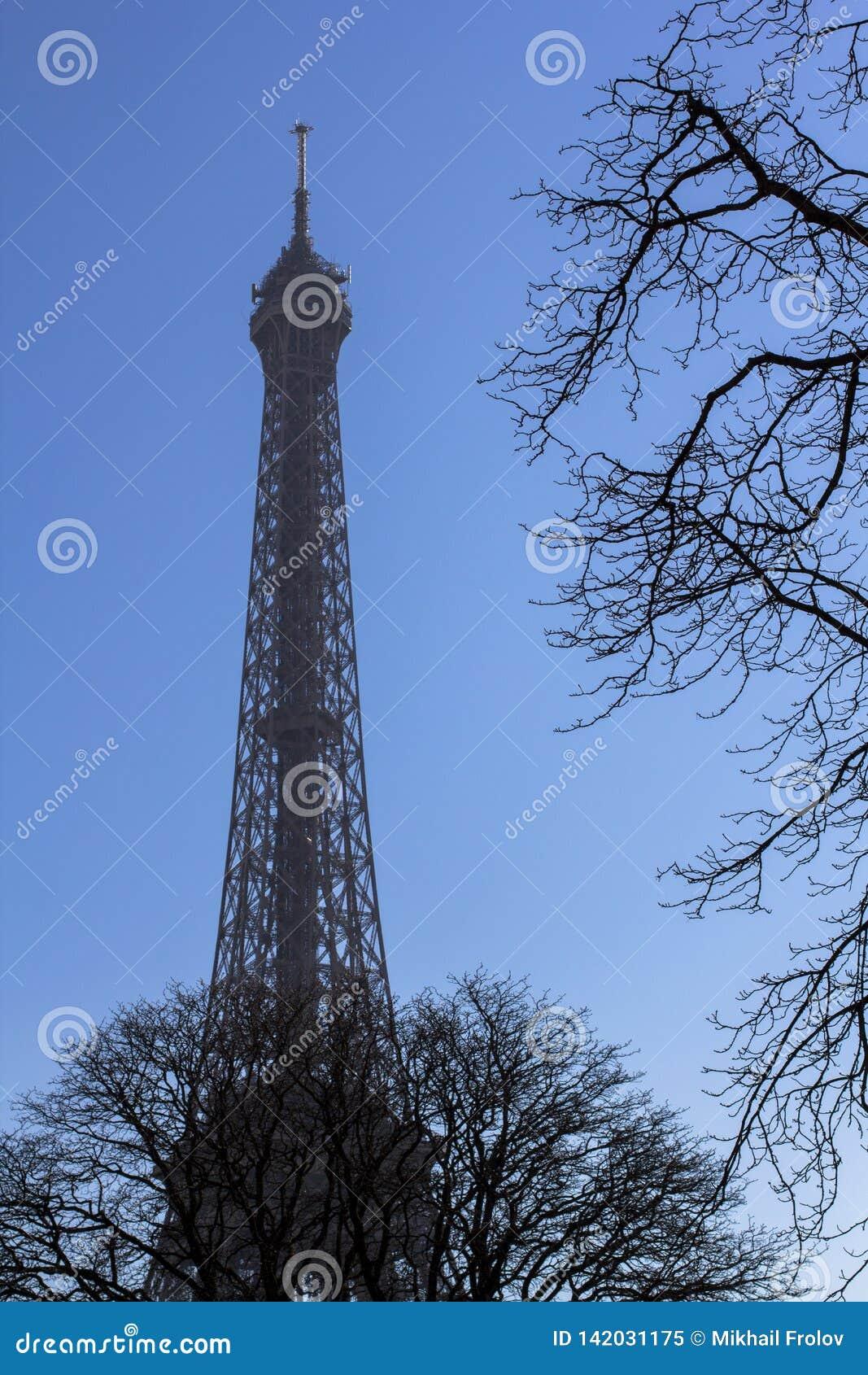 De Toren van Eiffel achter de bomen tegen de blauwe hemel