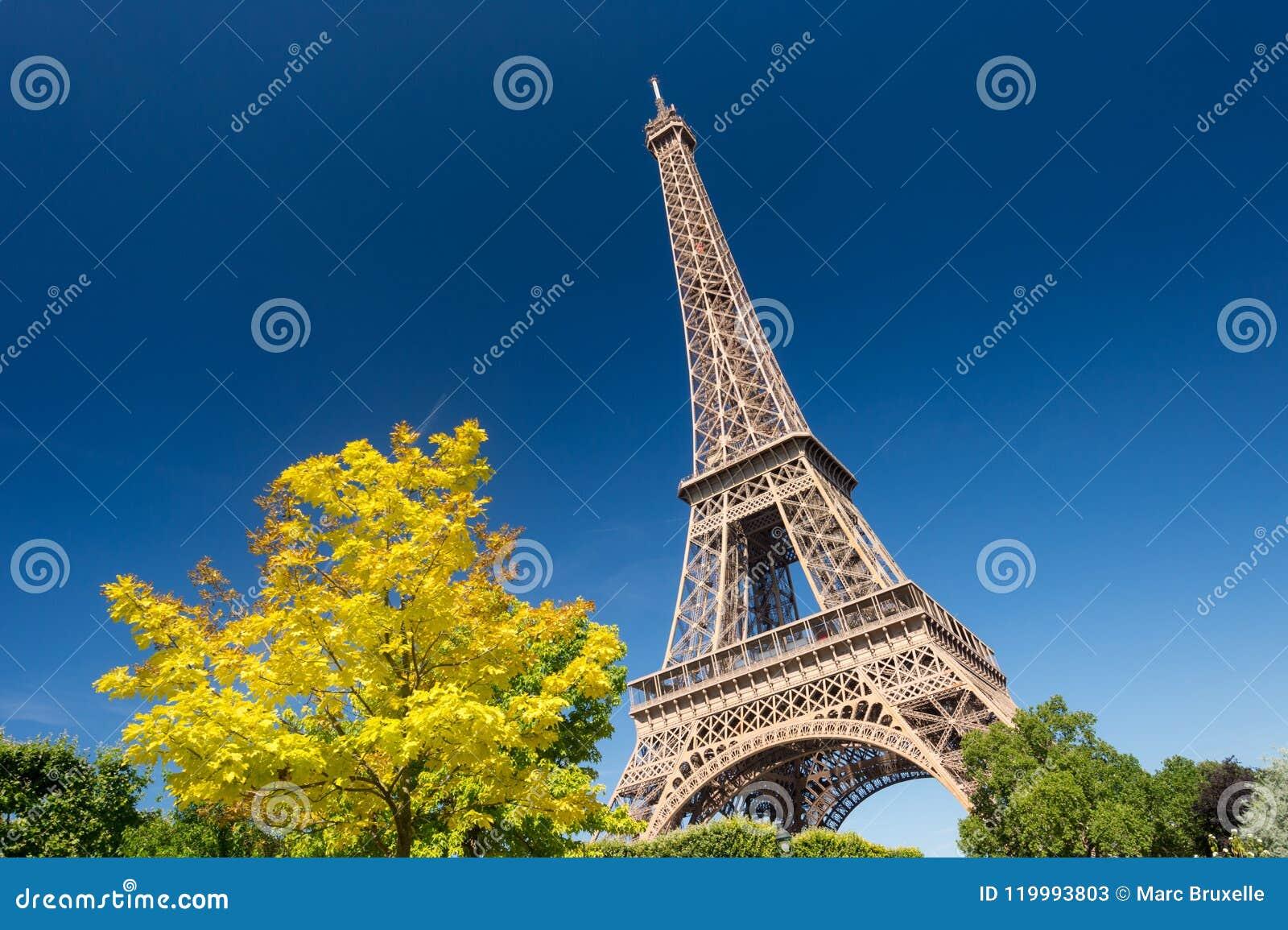 De Toren van Eiffel van de Champ de Marstuinen in de zomer