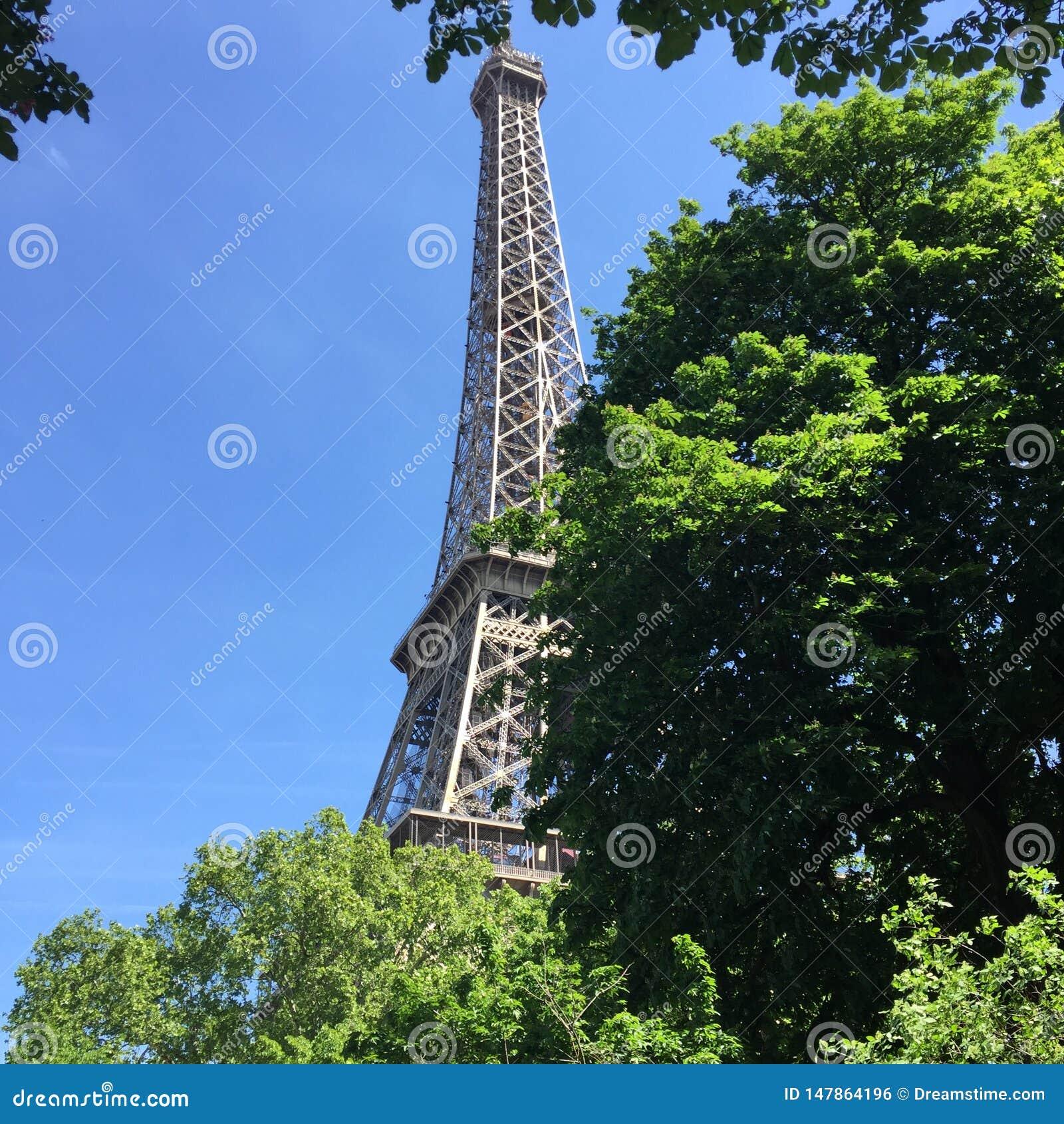 De Toren van Eiffel die door bomen wordt verborgen