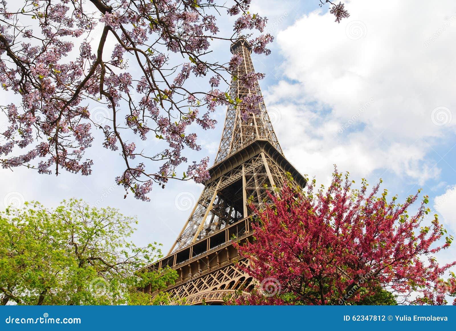De toren van Eiffel die door de de lentebloemen wordt omringd