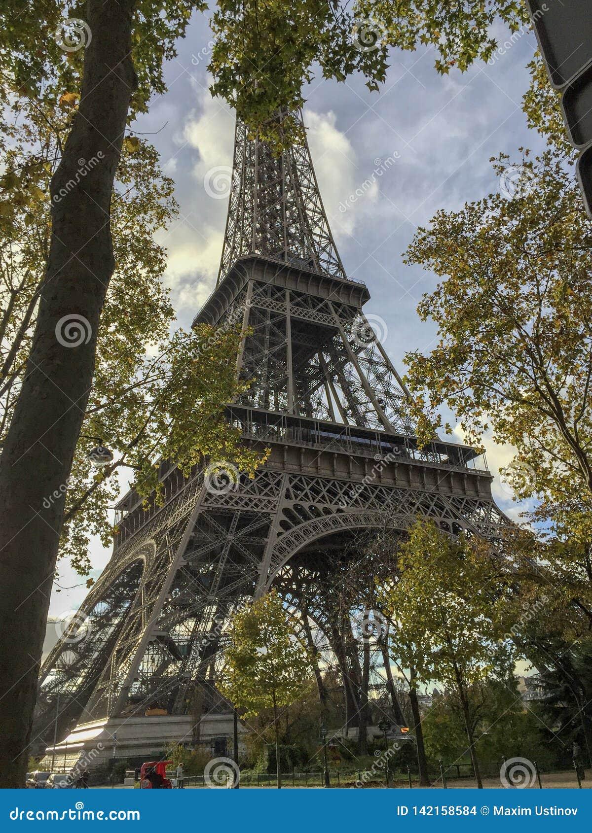 De Toren van Eiffel door de bomen wordt omringd die