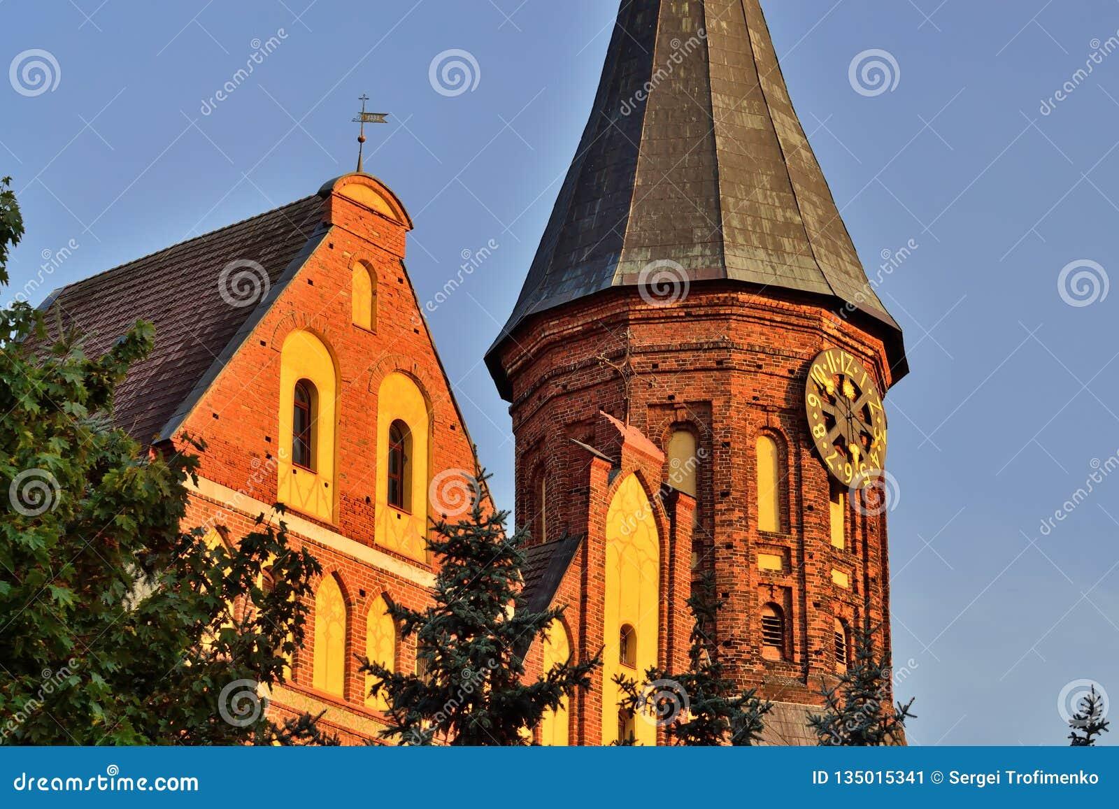 De toren van Koenigsberg-Kathedraal tegen de blauwe hemel Gotisch van de 14de eeuw Kaliningrad, Rusland