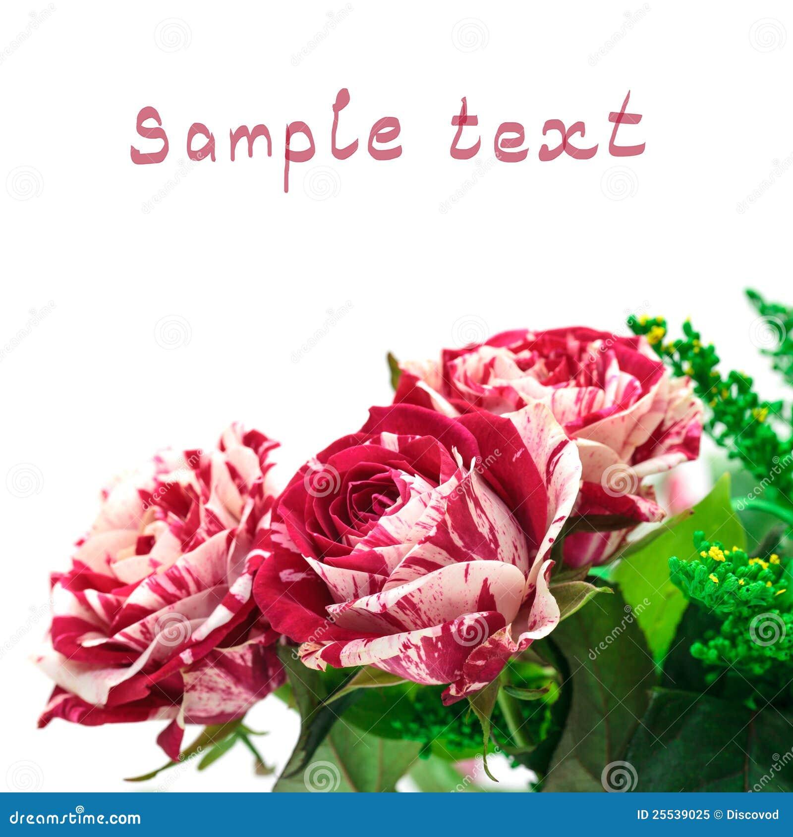 Extreem De Trillende Rood-Witte Bloemen Namen Knop Toe Stock Afbeelding #JF42