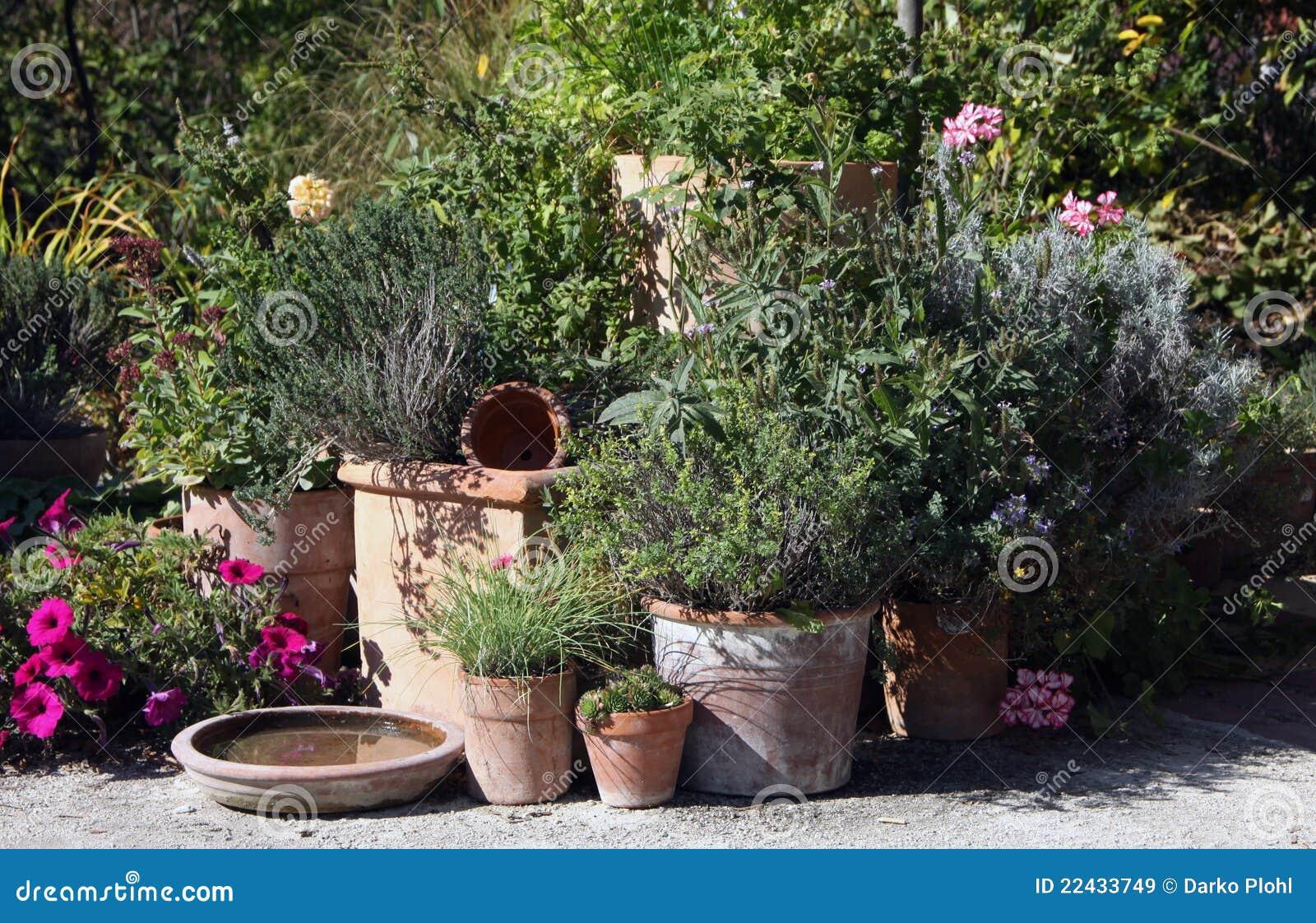 De tuin van kruiden en van bloemen in de potten stock afbeelding afbeelding 22433749 - Deco van de tuin ...