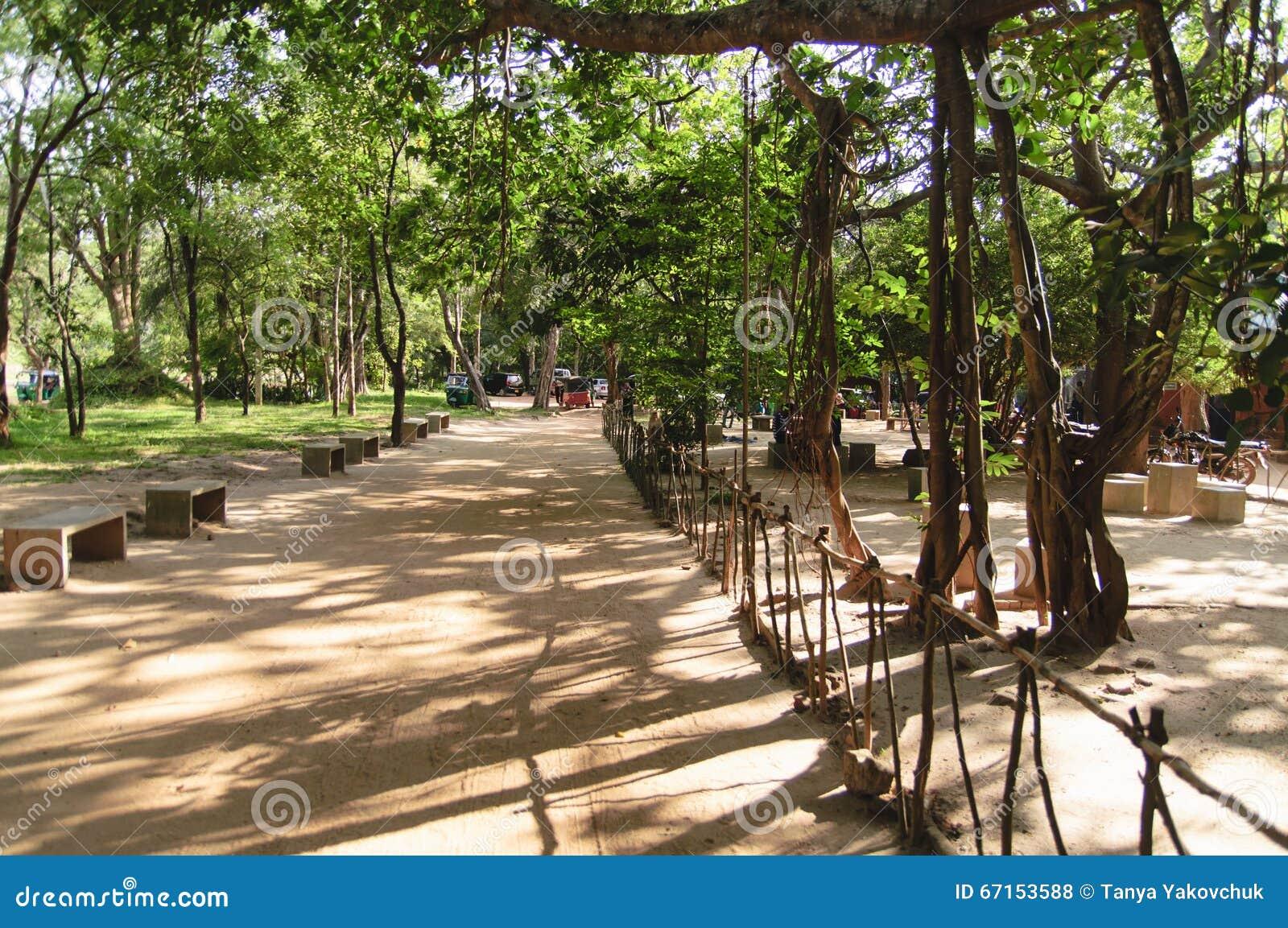 De tuinen van Sigiriya, Sri Lanka