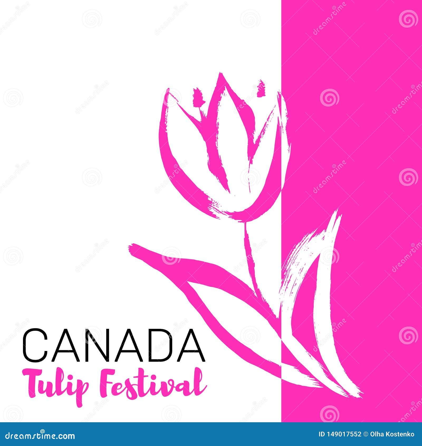 De Tulpenfestival van Canada Mei-festival