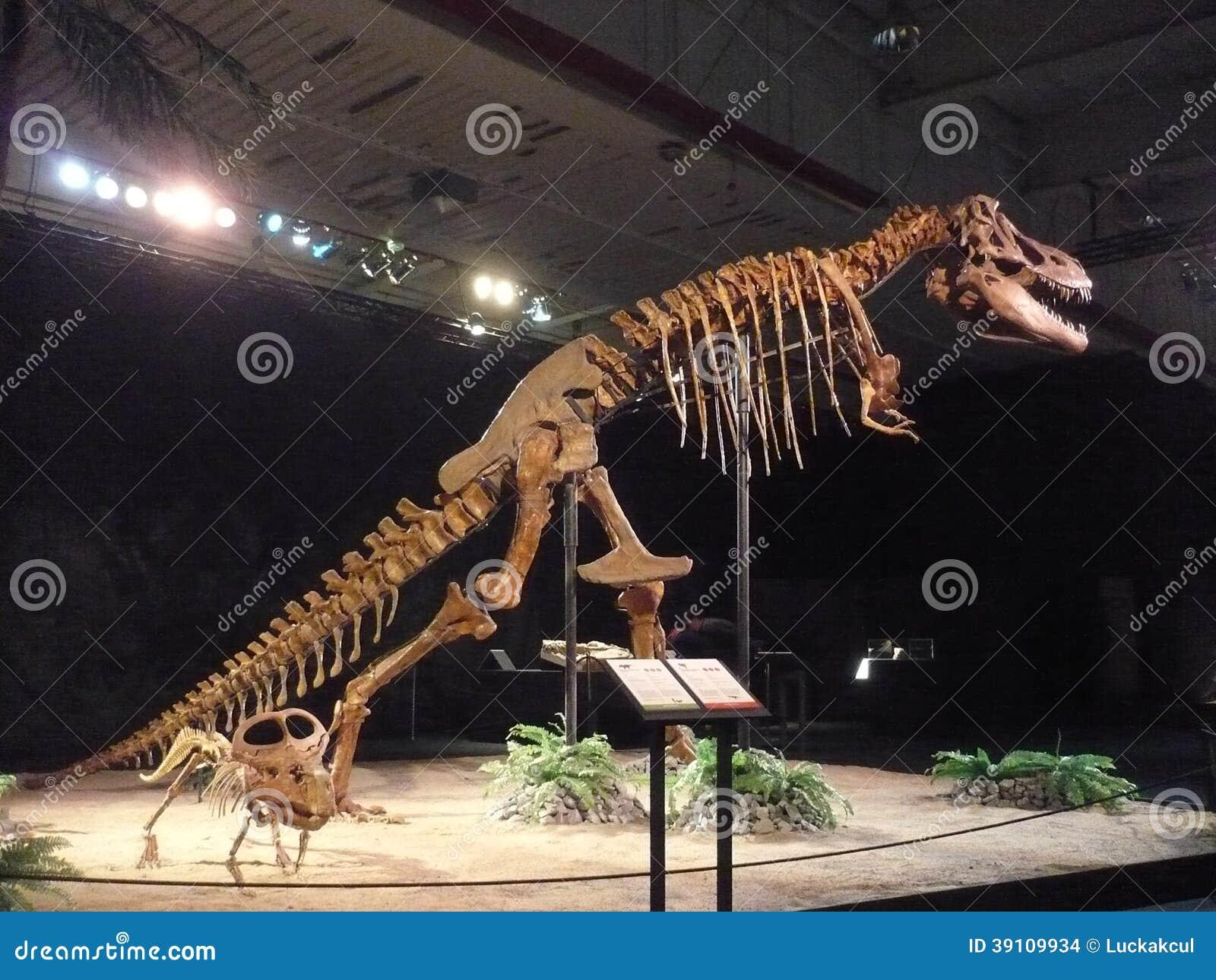 De Tyrannosaurus