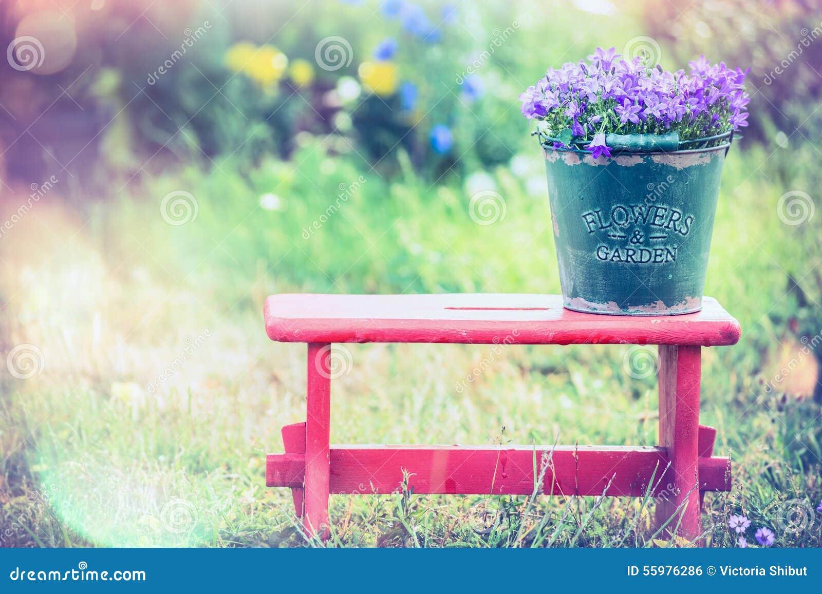 De uitstekende emmer met tuin bloeit op rood weinig kruk over de achtergrond van de de zomeraard