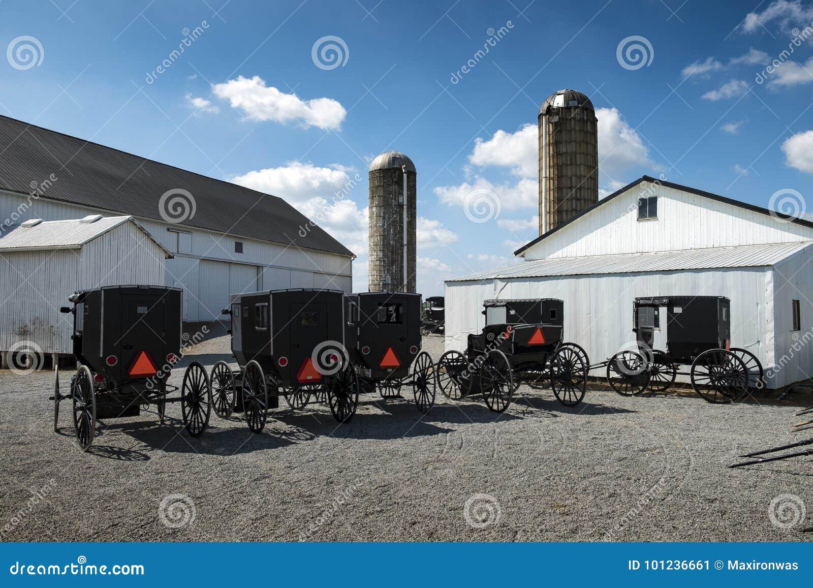 De V.S. - Ohio - Amish