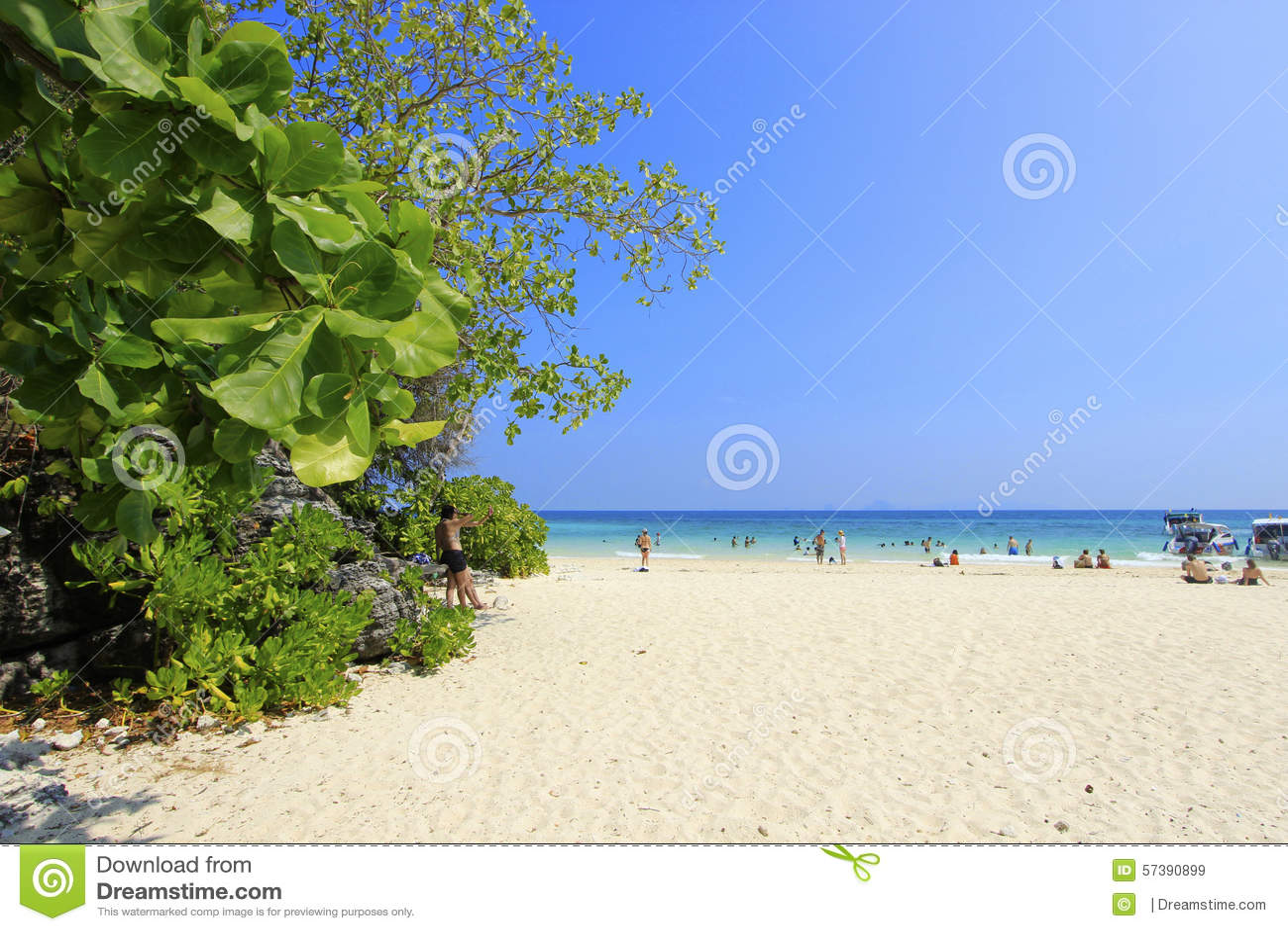 De vakantie van het strand