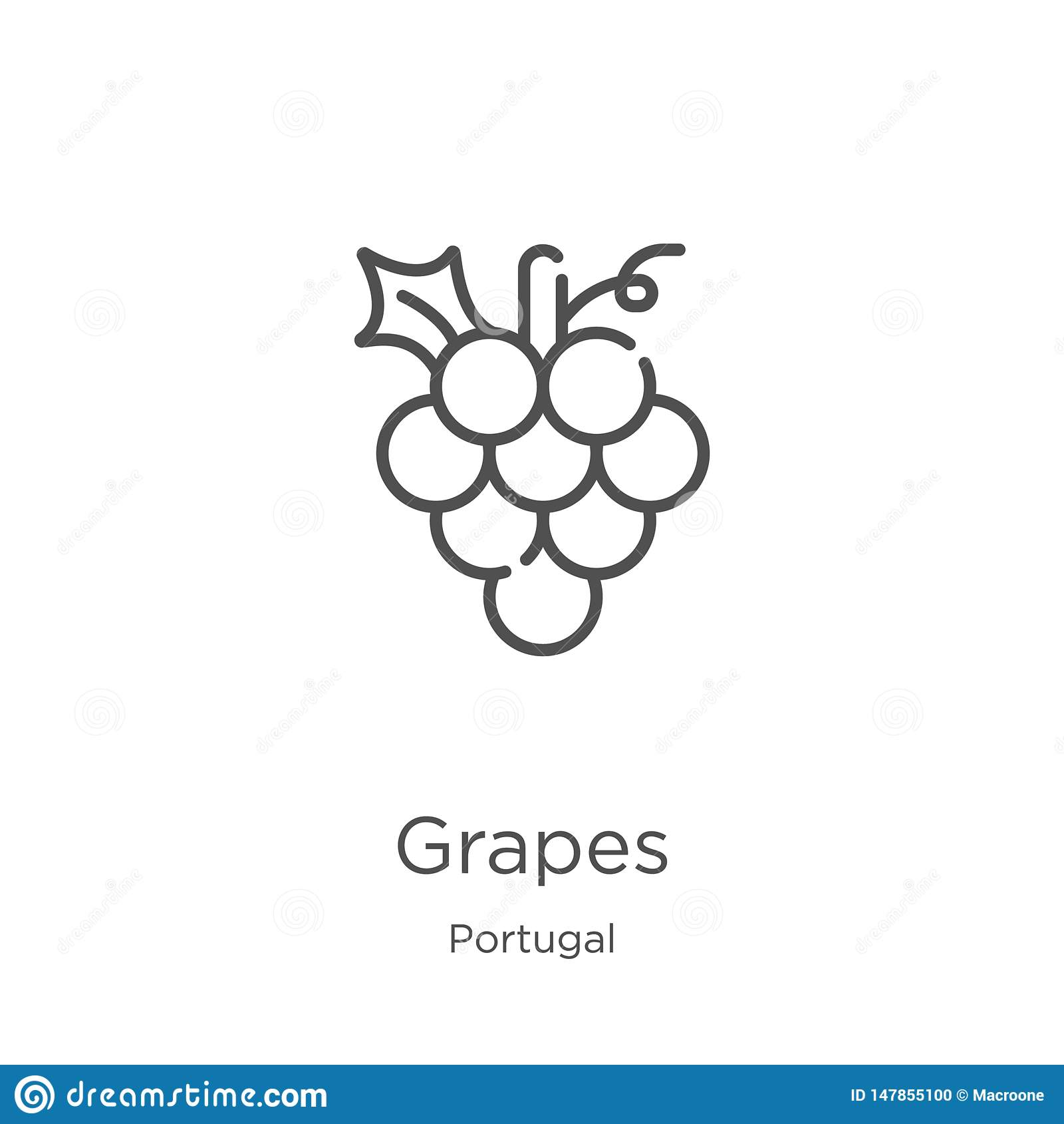 De vector van het druivenpictogram van de inzameling van Portugal De dunne van het het overzichtspictogram van lijndruiven vector