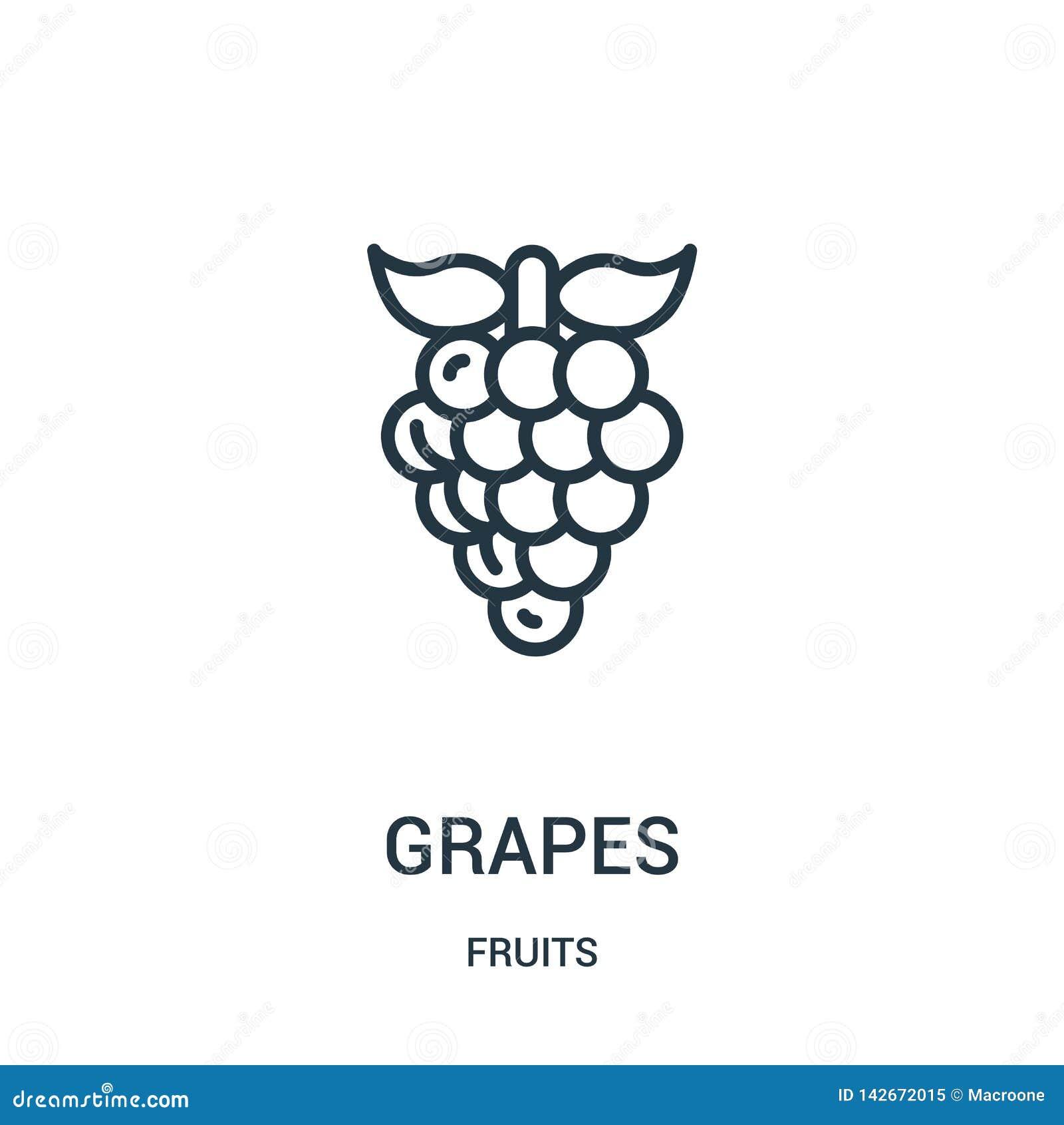 De vector van het druivenpictogram van vruchten inzameling De dunne van het het overzichtspictogram van lijndruiven vectorillustr