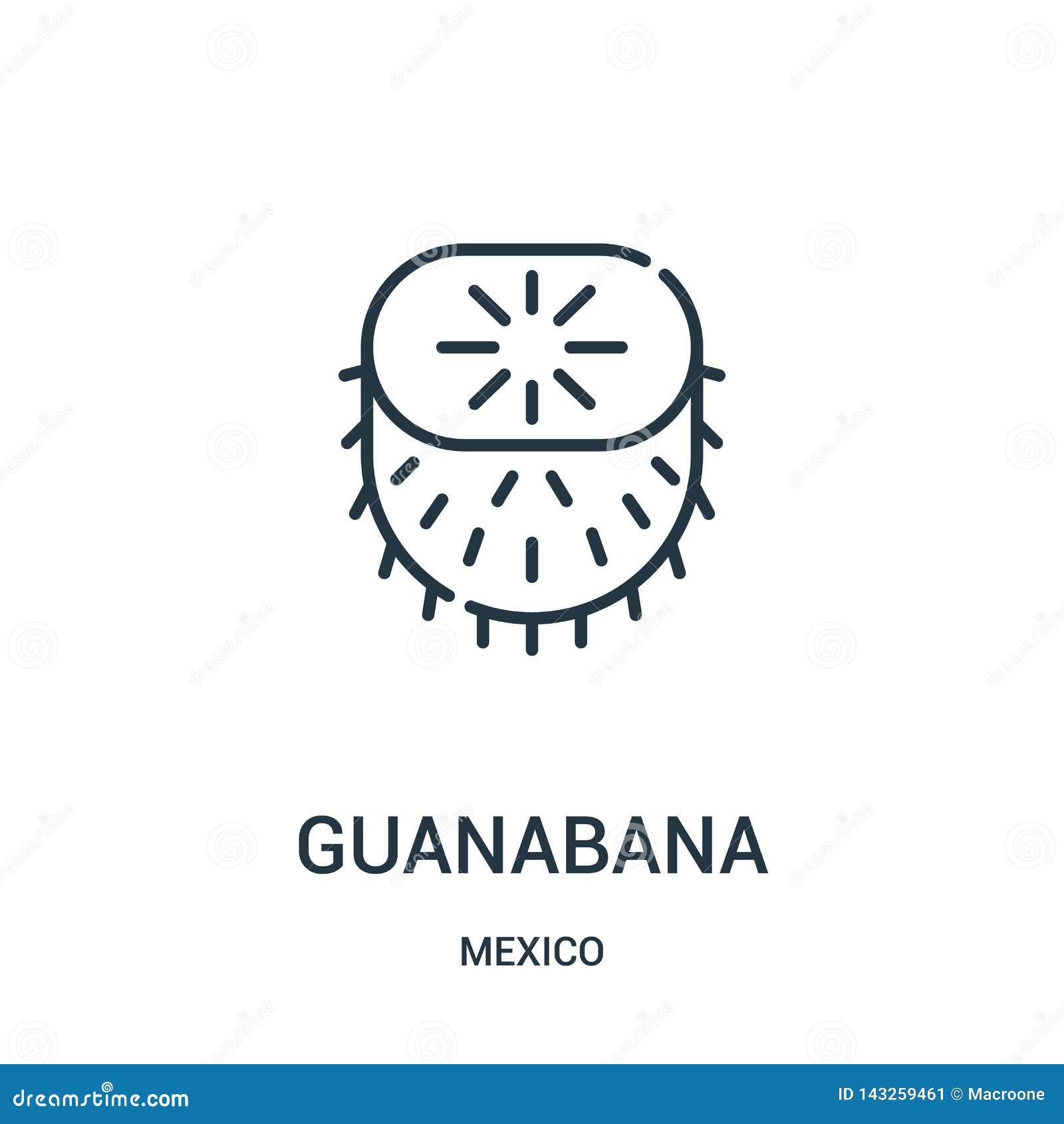 De vector van het guanabanapictogram van de inzameling van Mexico De dunne van het het overzichtspictogram van lijnguanabana vect
