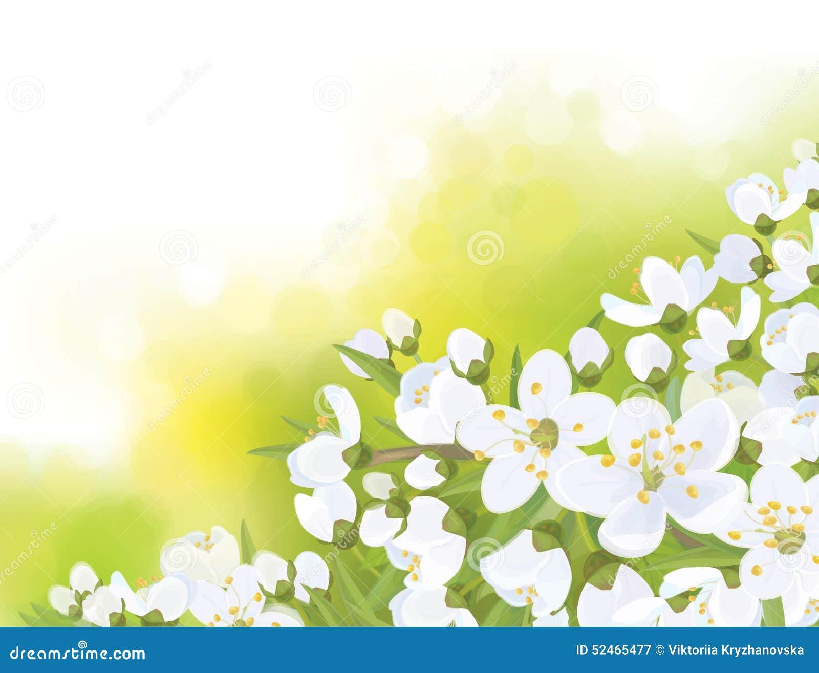 De vectorboom van de lente tot bloei komende sakura