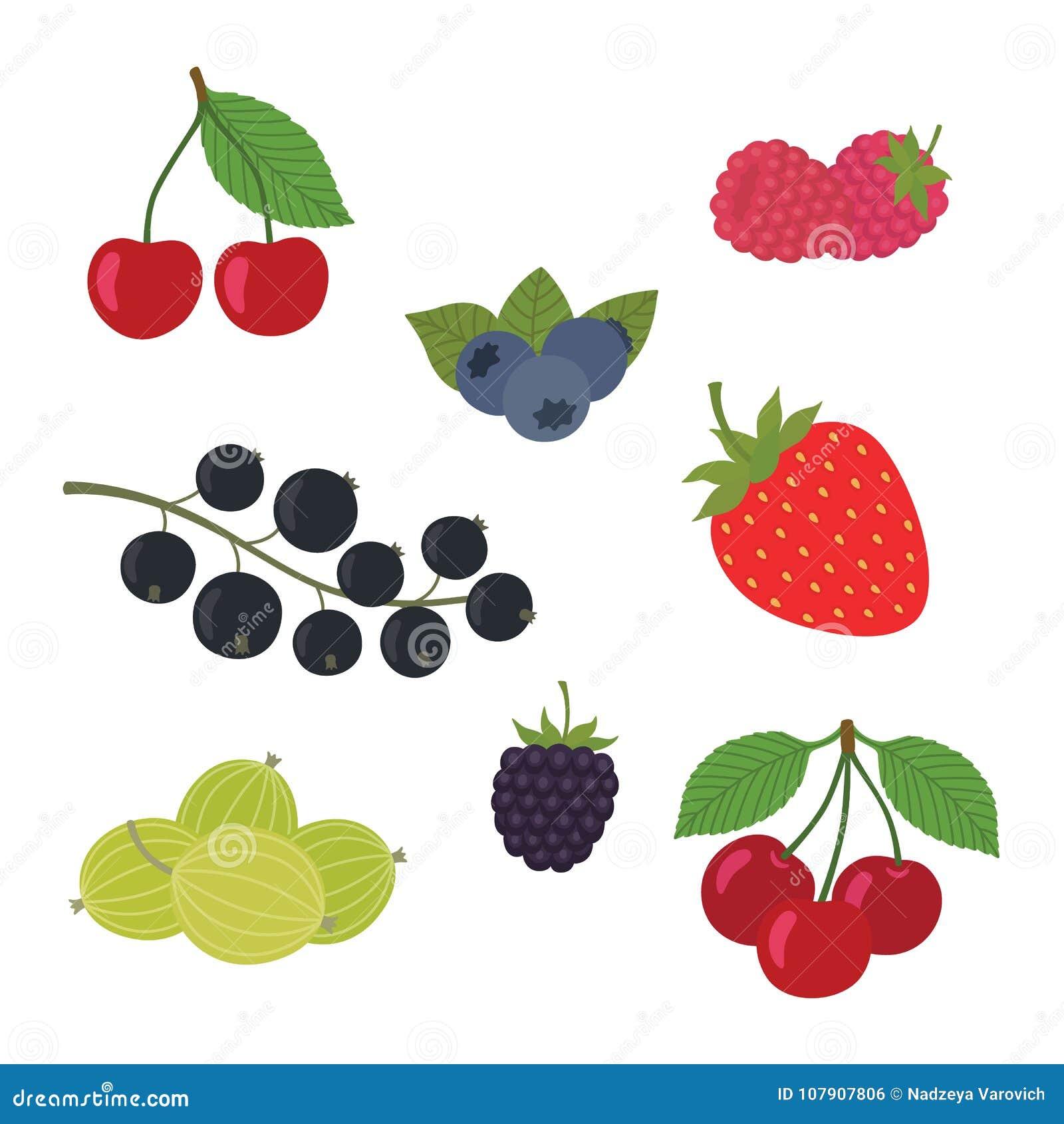 De Vectorillustratie van de bessenreeks Aardbei, Blackberry, Bosbes, Kers, Framboos, zwarte bes, Kruisbes
