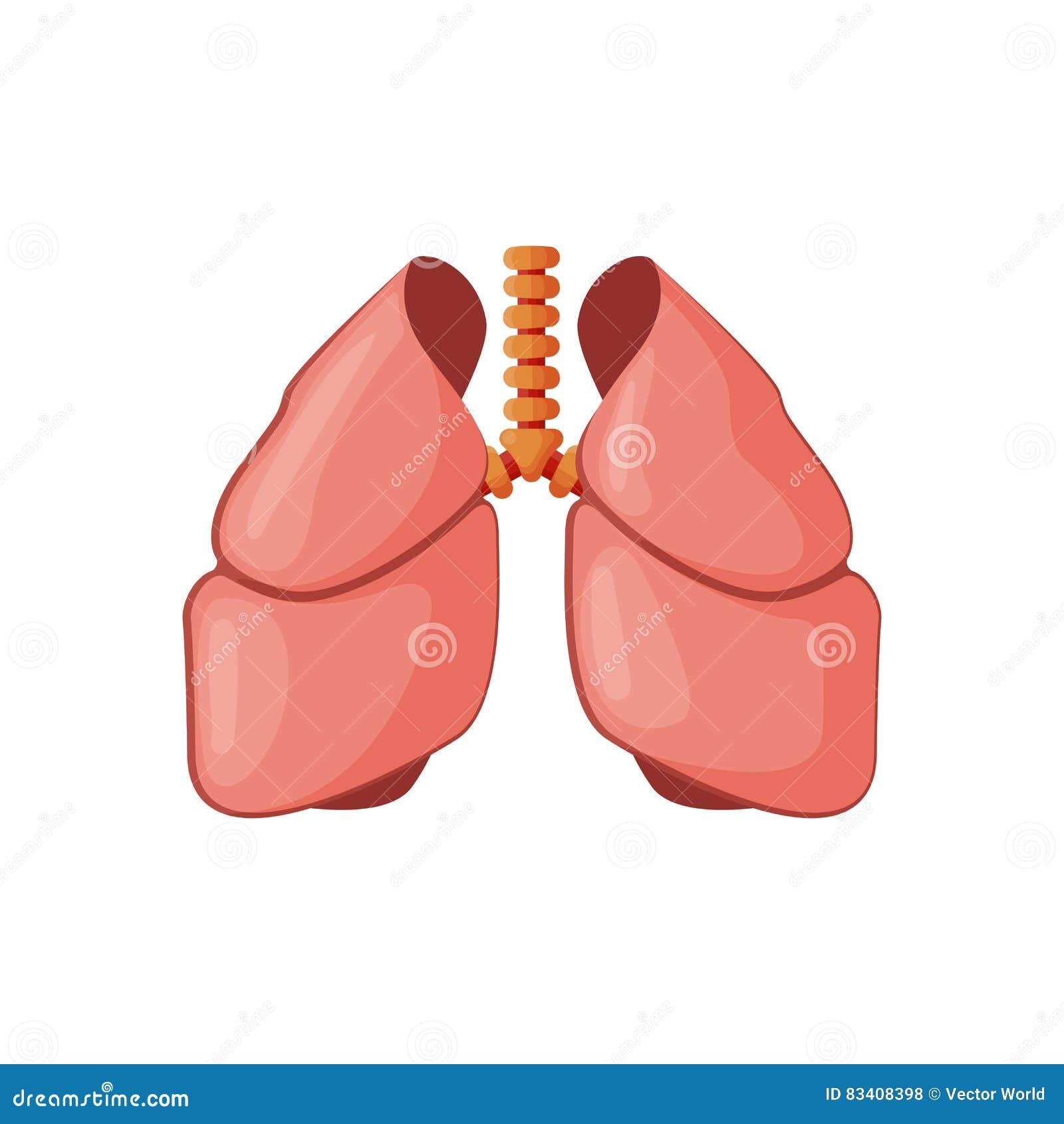 De vectorillustratie van het longenpictogram