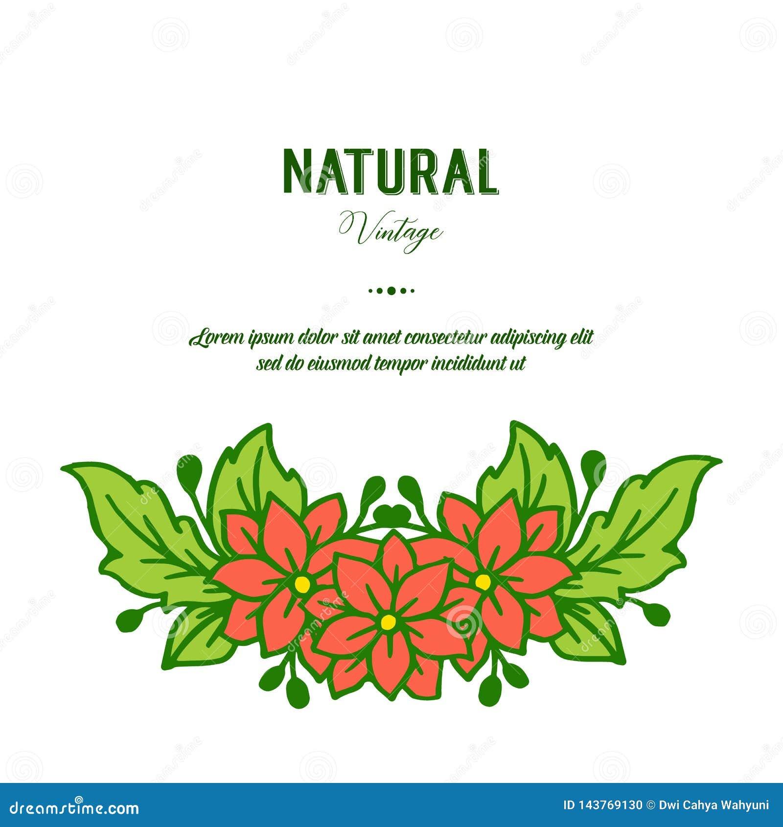 De vectorillustratieschoonheid van groene bladbloemkaders bloeit voor de natuurlijke wijnoogst van de groetkaart