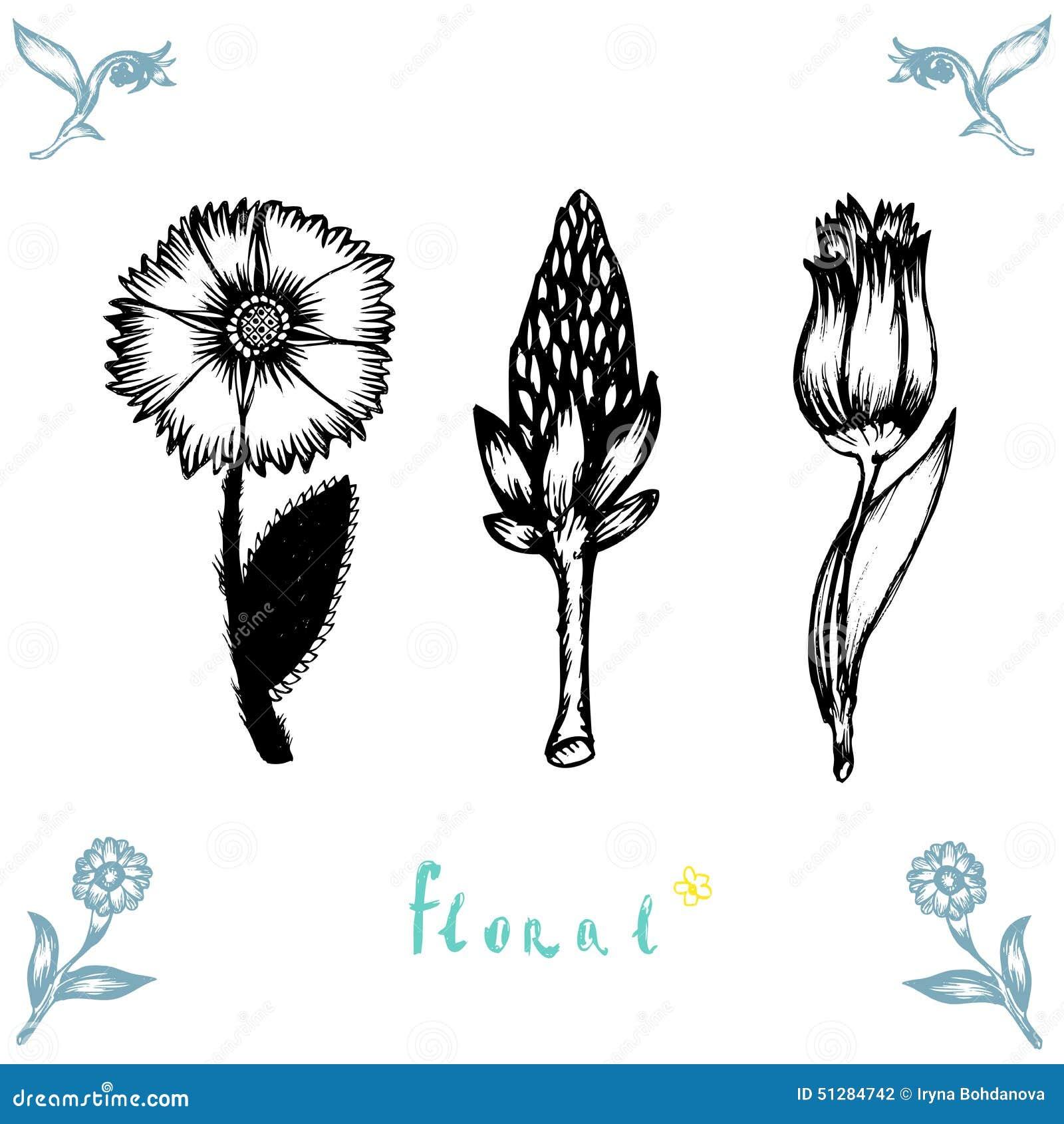 De vectorreeks van bloemen