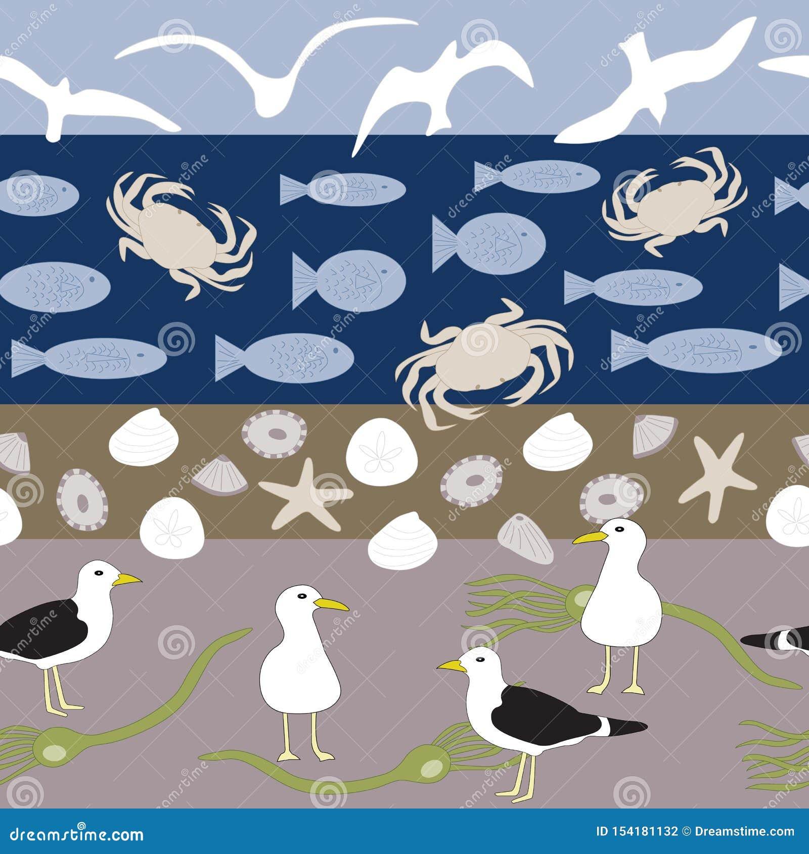 De vectorstrandscène met Vogels, de de Naadloze Shells, Vissen, Krabben en het Zeewier herhalen Patroon