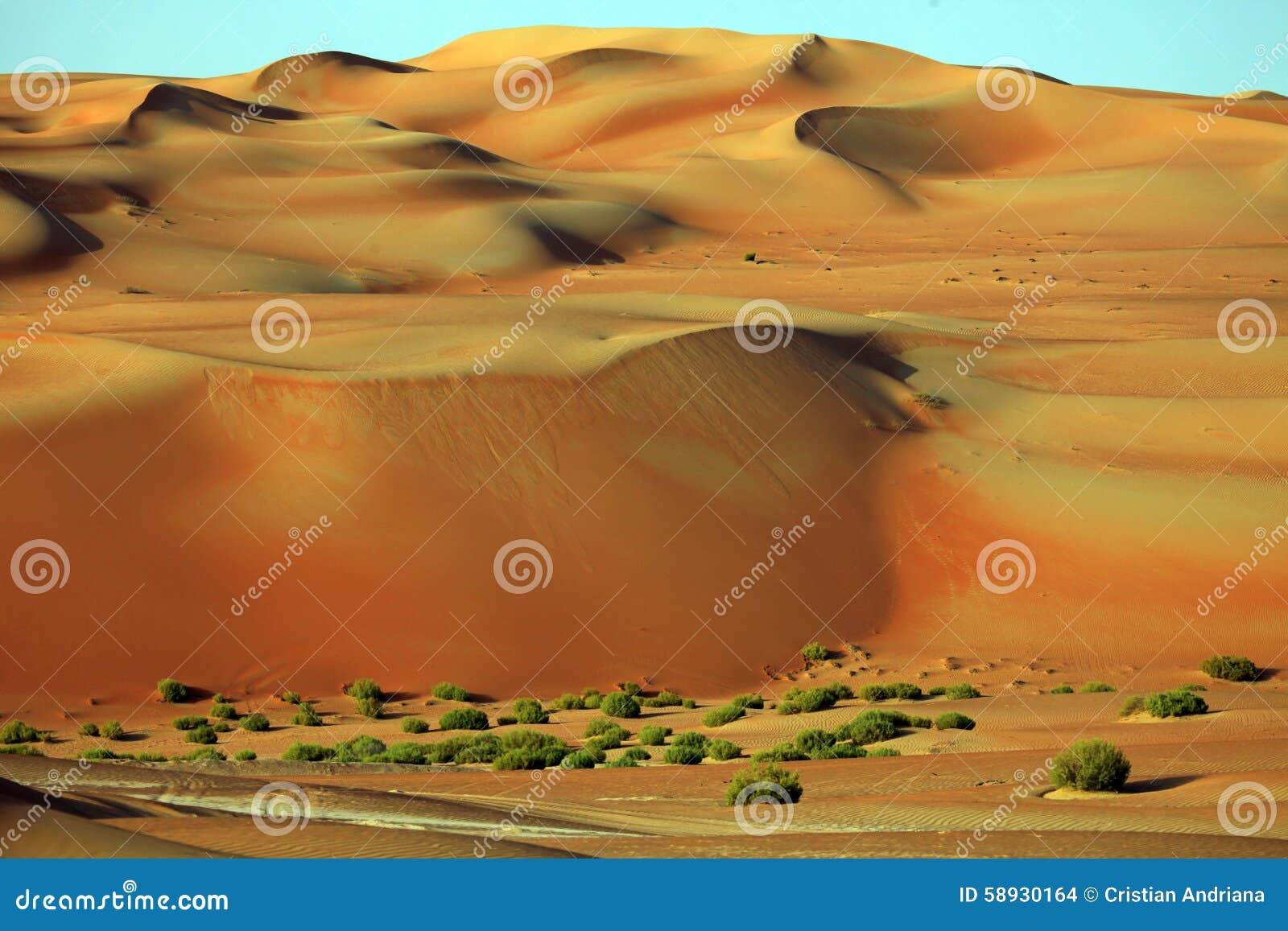 De verbazende vormingen van het zandduin in Liwa-oase, Verenigde Arabische Emiraten