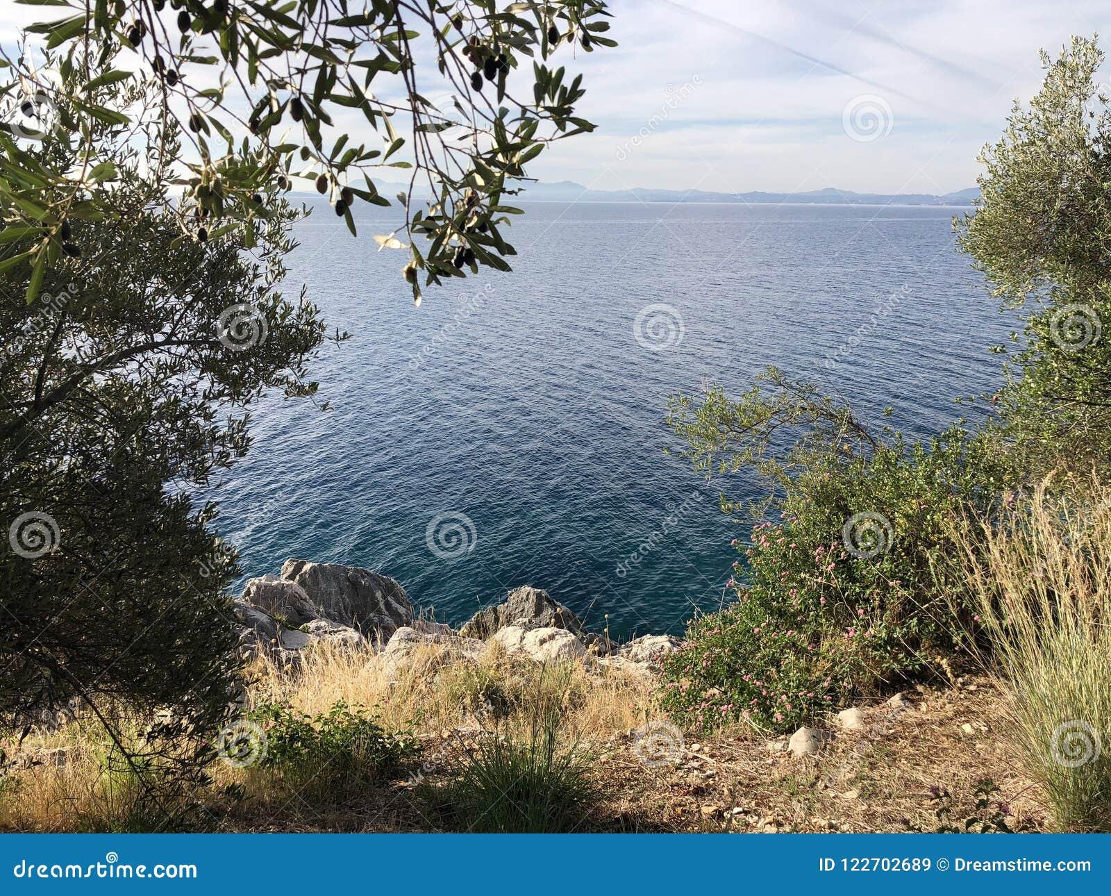 De verborgen aard van de overzeese bomeninstallaties van Griekenland