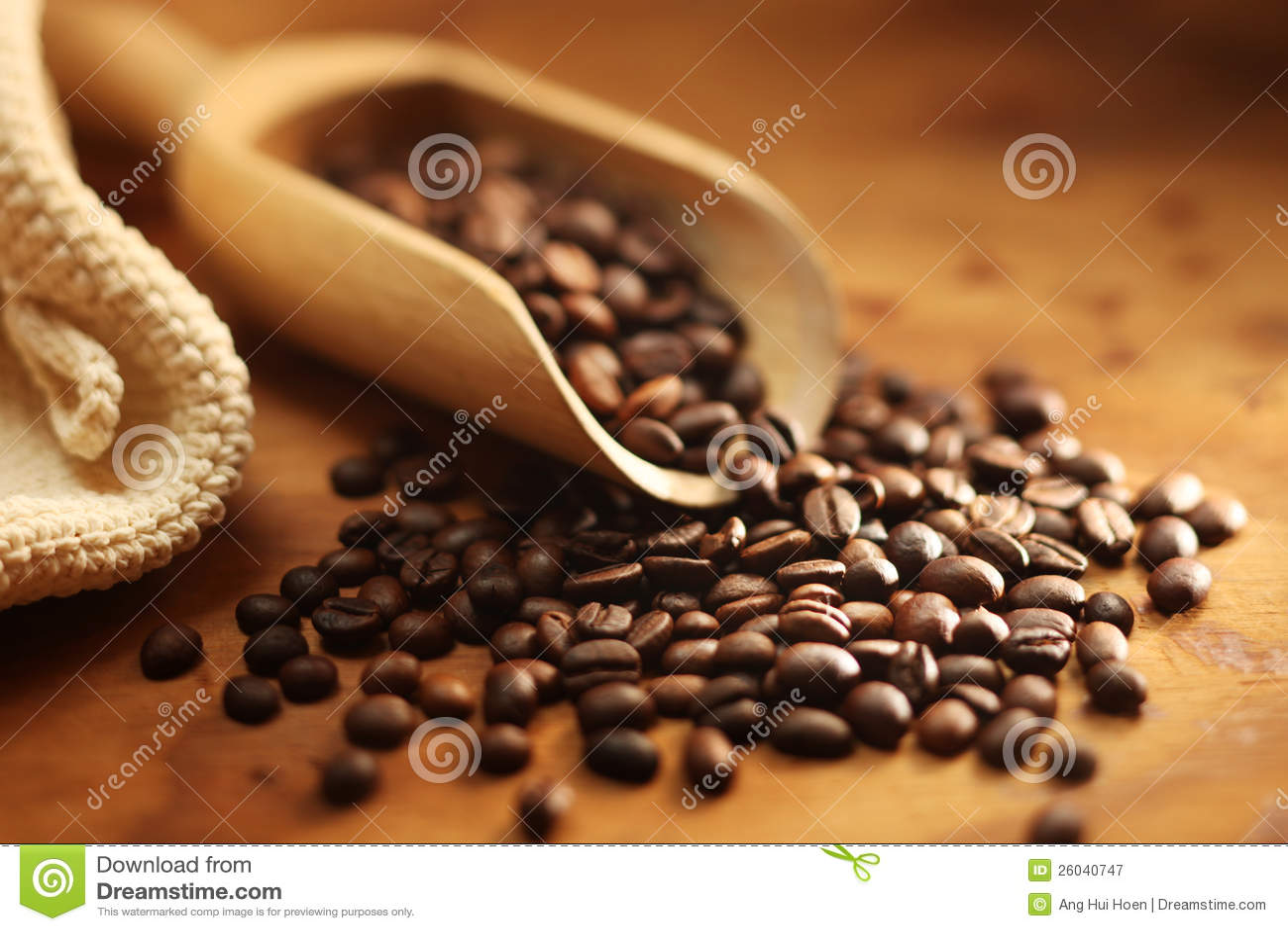 De verse Boon van de Koffie