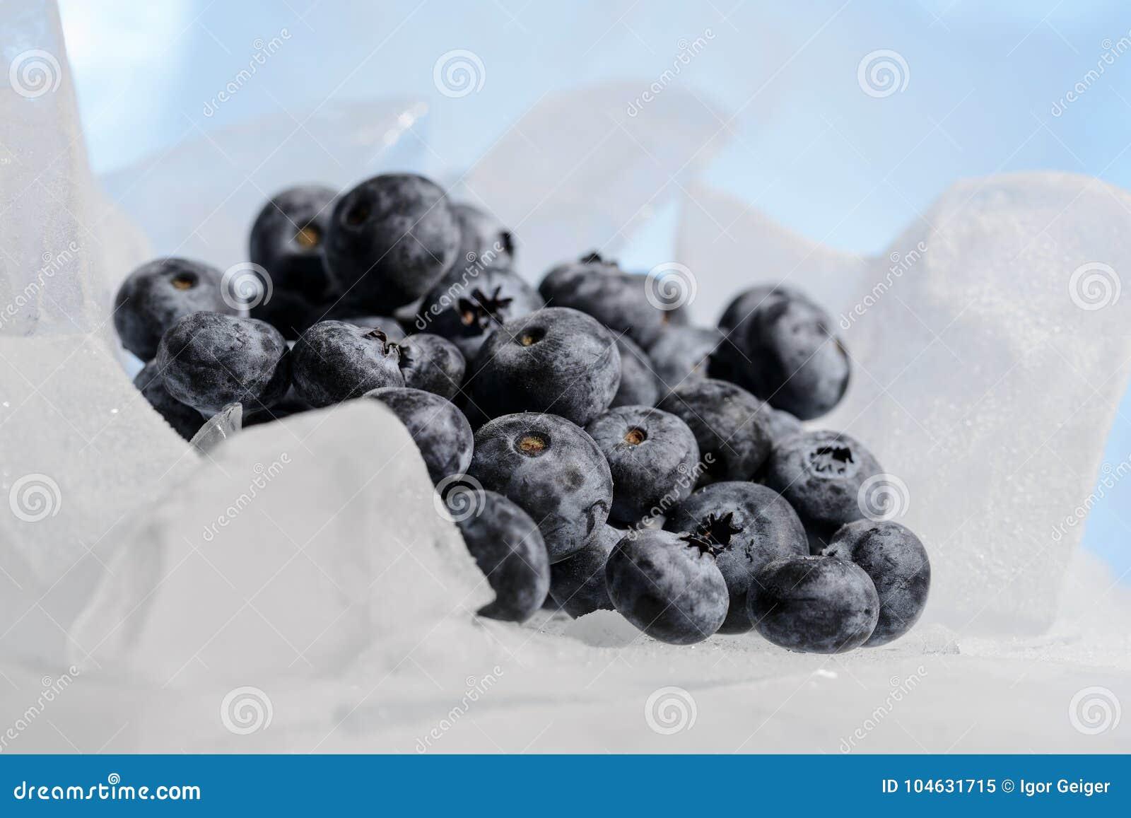 Download De Verse Bosbessen Zijn Bevroren Op Koud Blauw Ijs Stock Afbeelding - Afbeelding bestaande uit zijn, voeding: 104631715