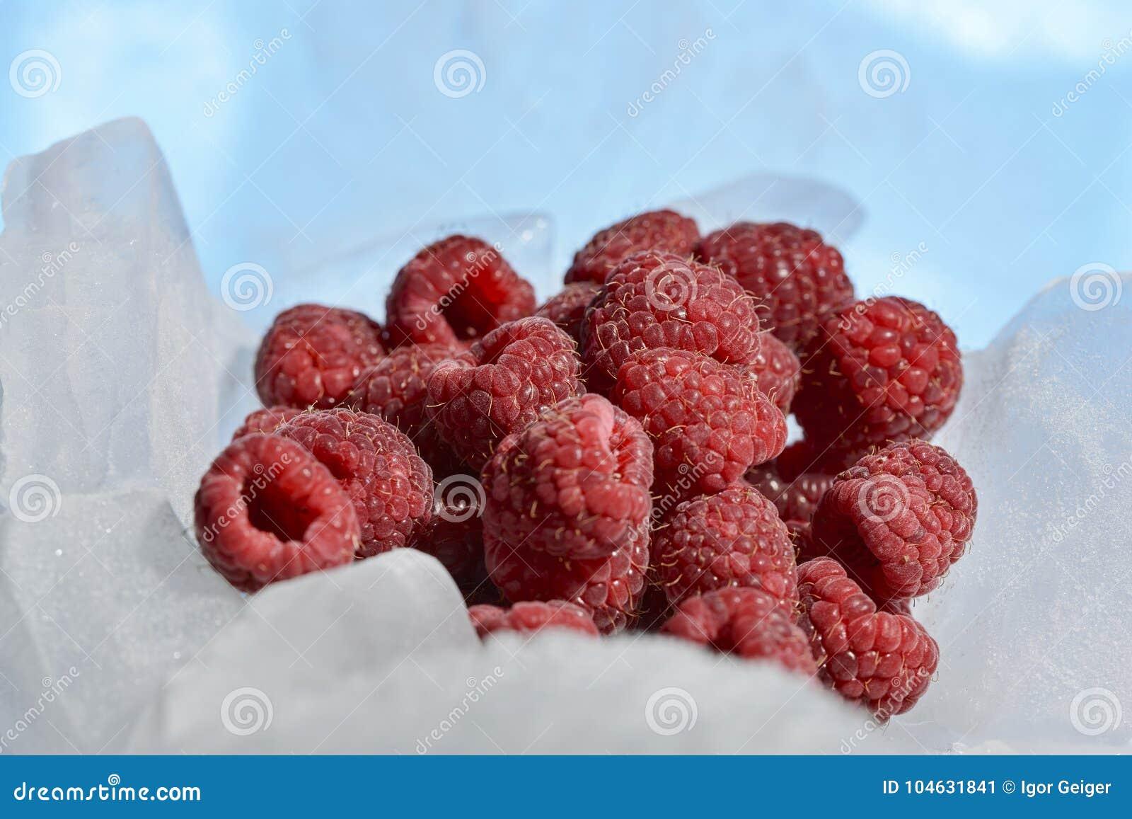 Download De Verse Frambozen Zijn Bevroren Op Koud Blauw Ijs Stock Afbeelding - Afbeelding bestaande uit voedsel, koude: 104631841