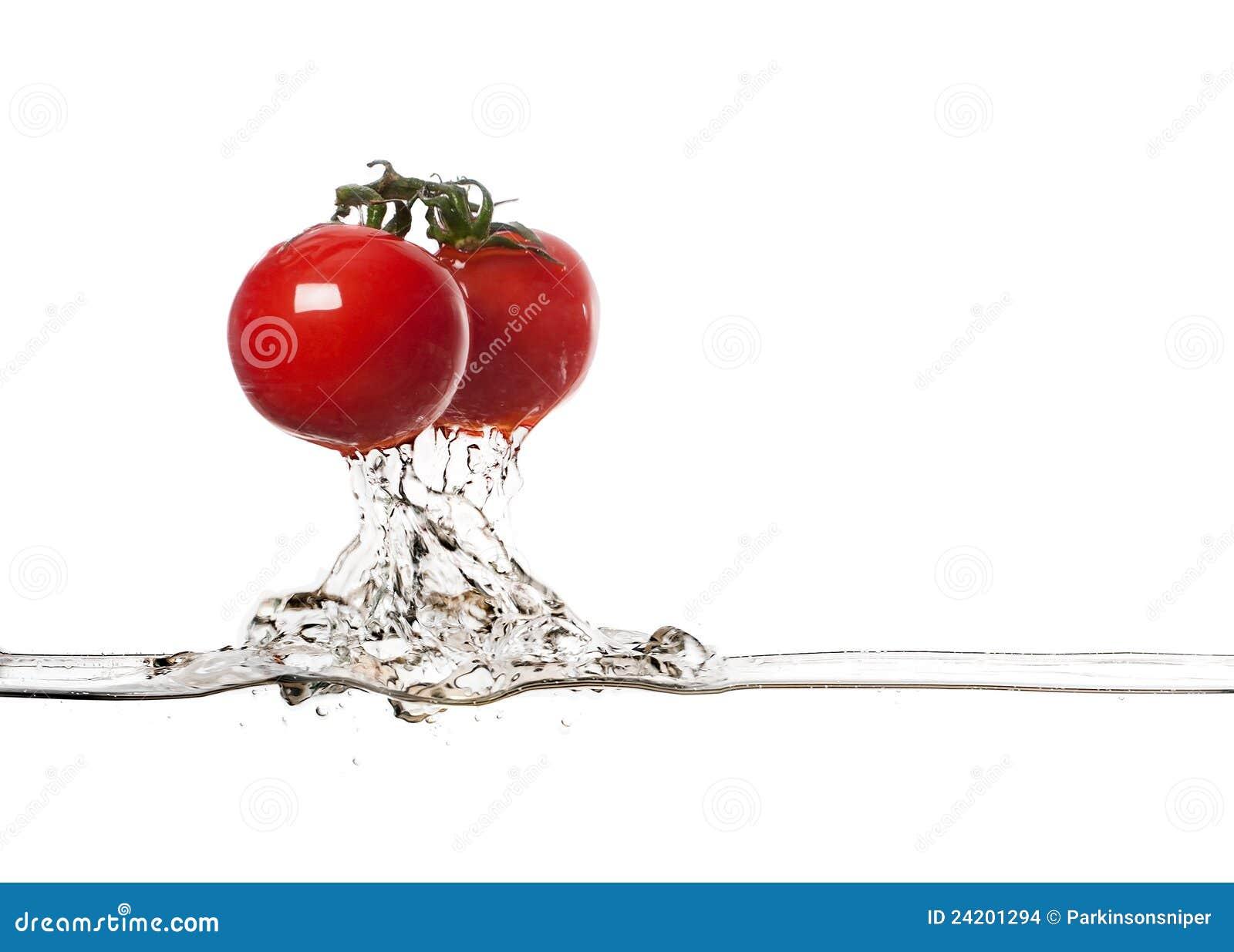 De verse Plons van Tomaten
