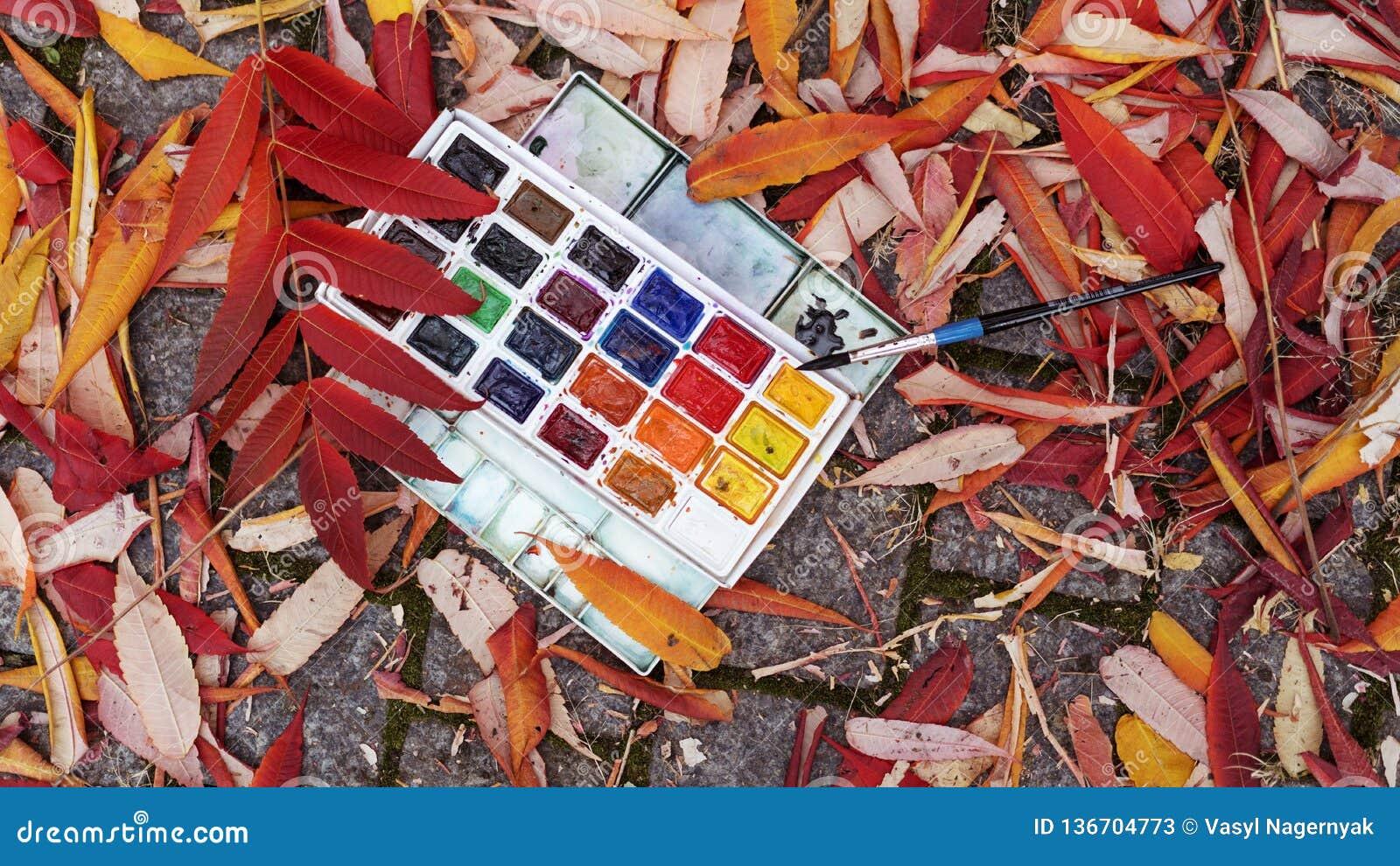 De verven liggen op de grond in kleurrijke bladeren