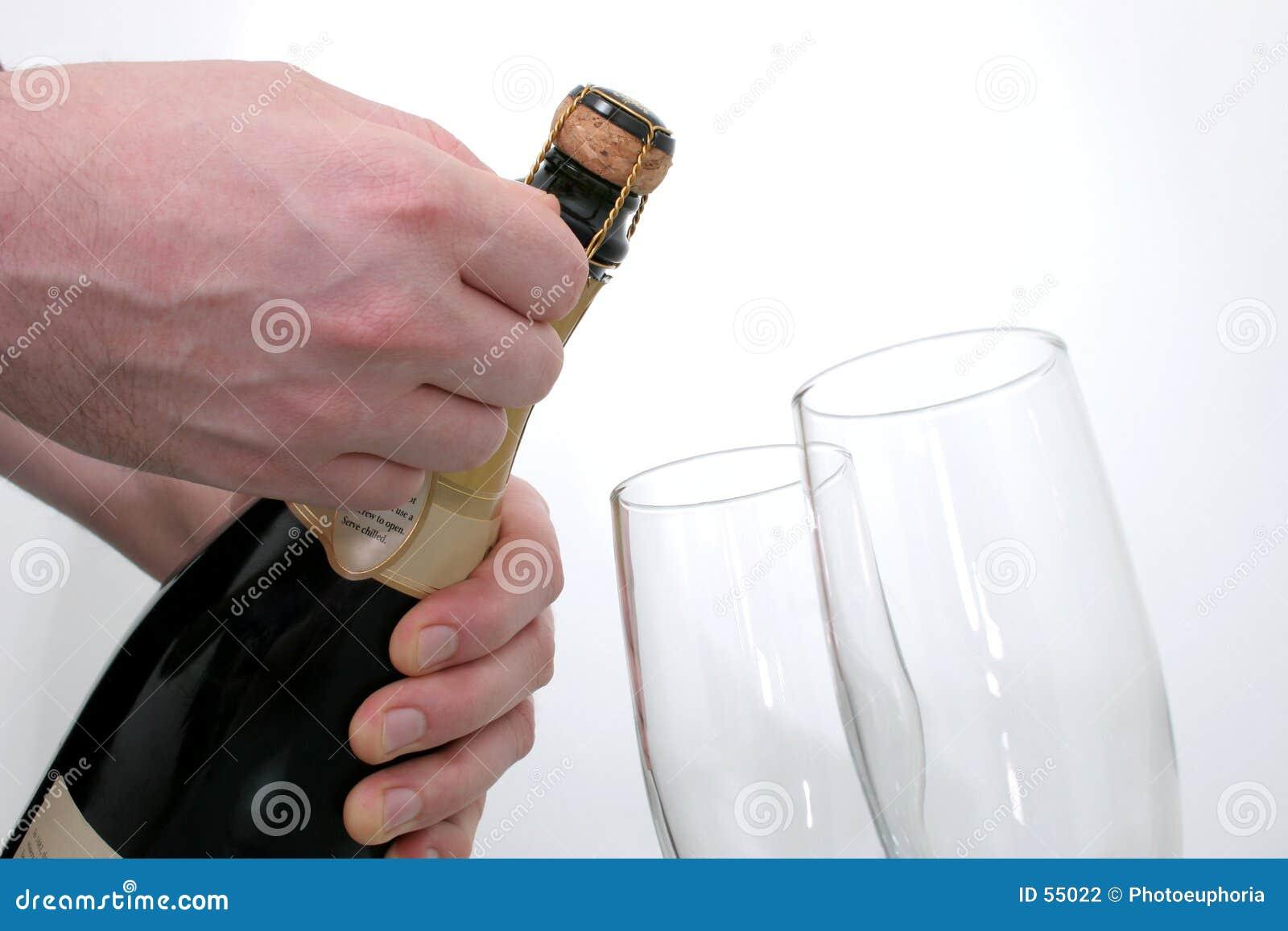 De Viering van Champagne (Beeld 8.2mp)