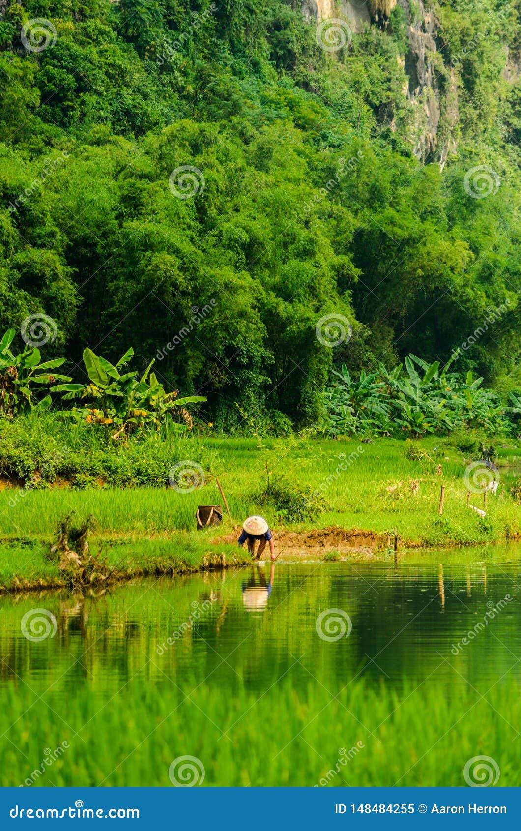 De Vietnamese hulpmiddelen van de landbouwerswas in rivier