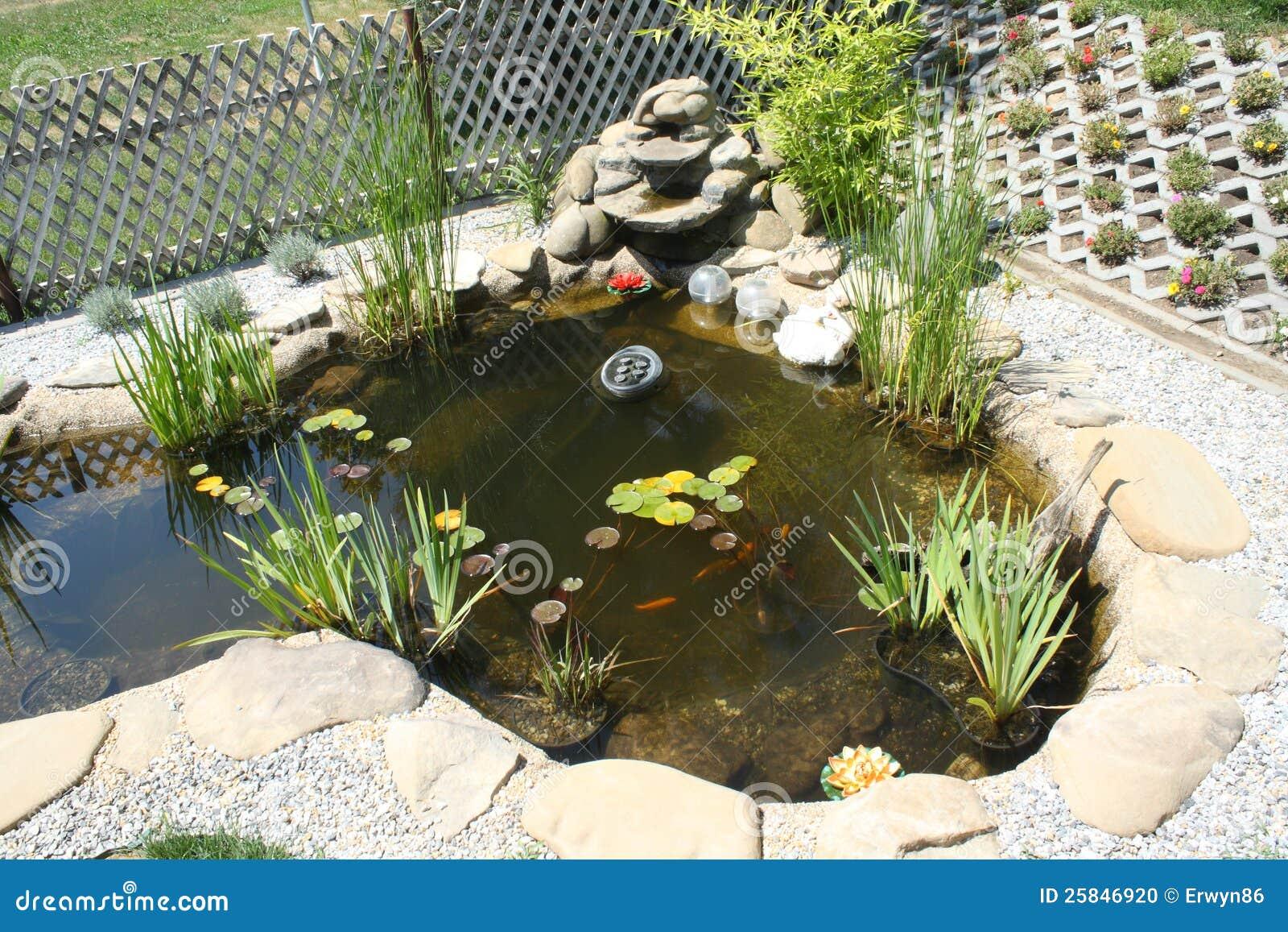 De vijver van de tuin met waterval stock foto afbeelding for Kleine tuinvijver