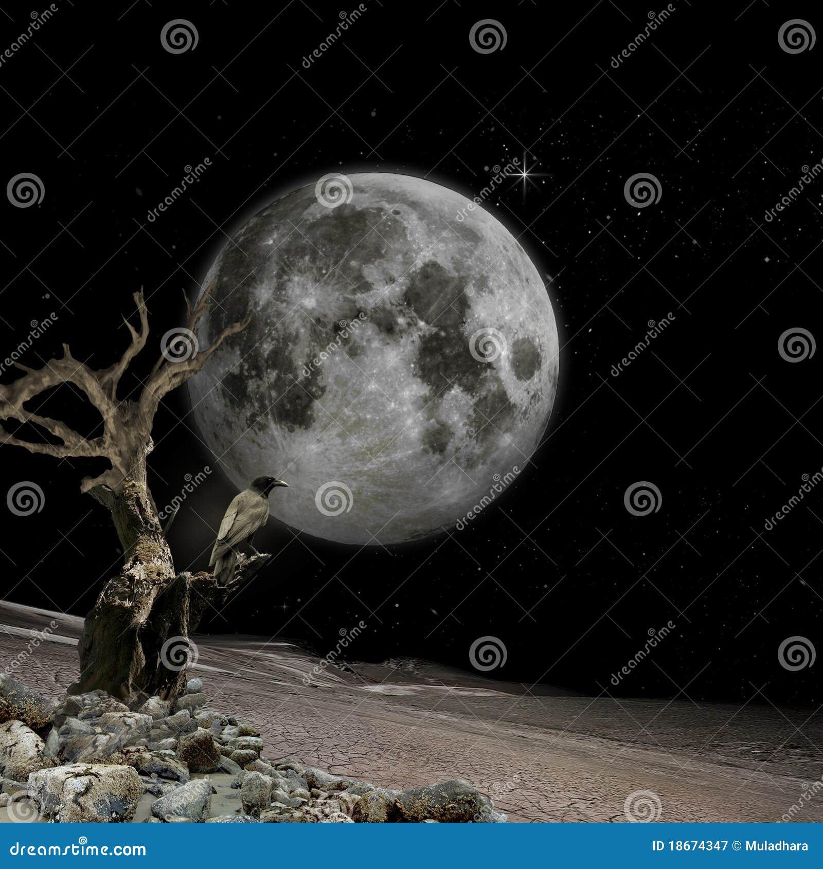 De visie van de maan