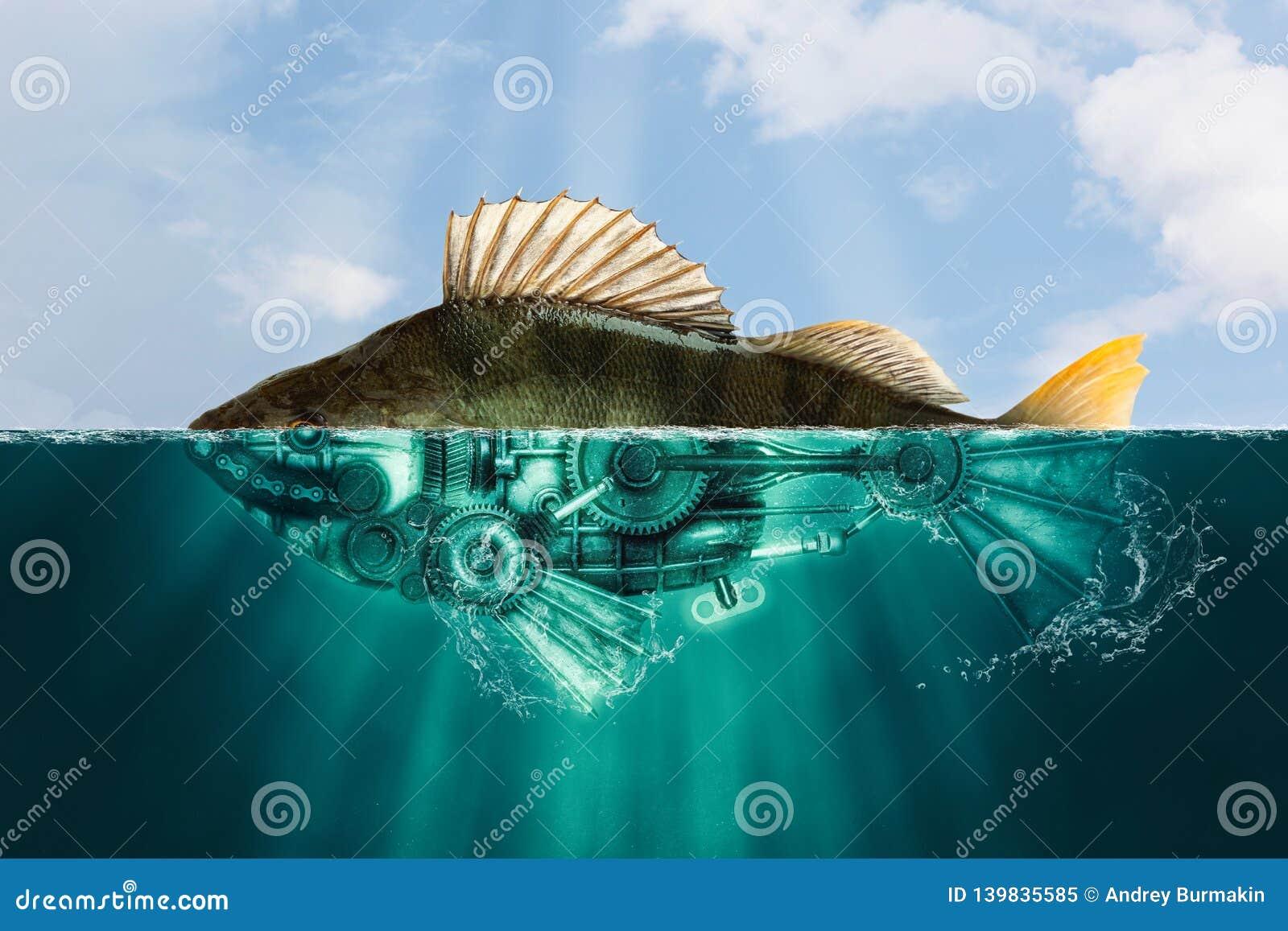 De vissen van de Steampunkstijl toppositie