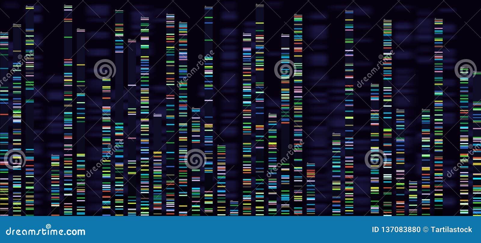 De visualisatie van de Genomicanalyse DNA-de genomen, deoxyribonucleic zure genetische kaart en de genoomopeenvolging die analyse
