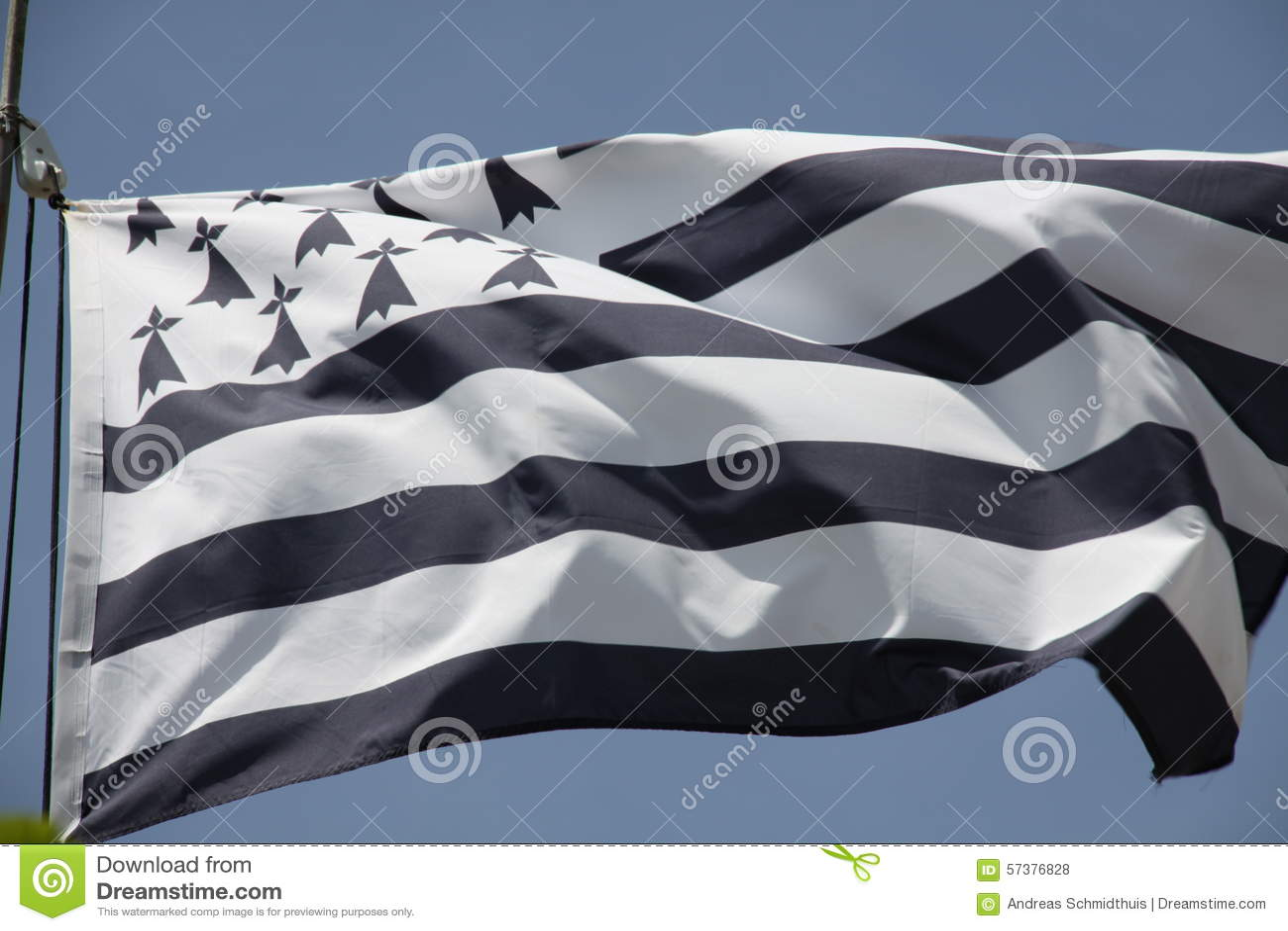 De vlag van Bretagne