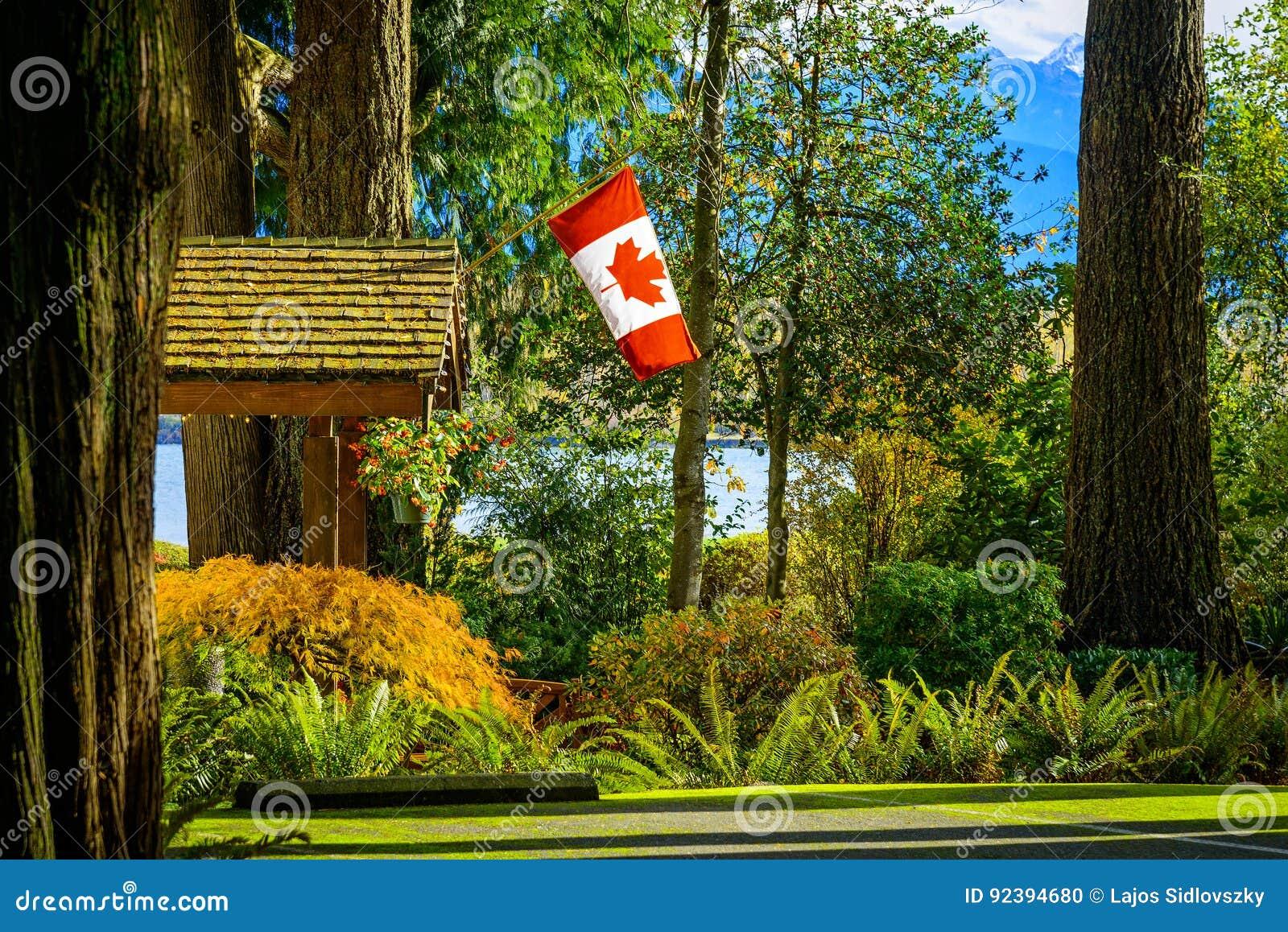 De vlag van Canada in bos, BC, Brits Colombia, Canada
