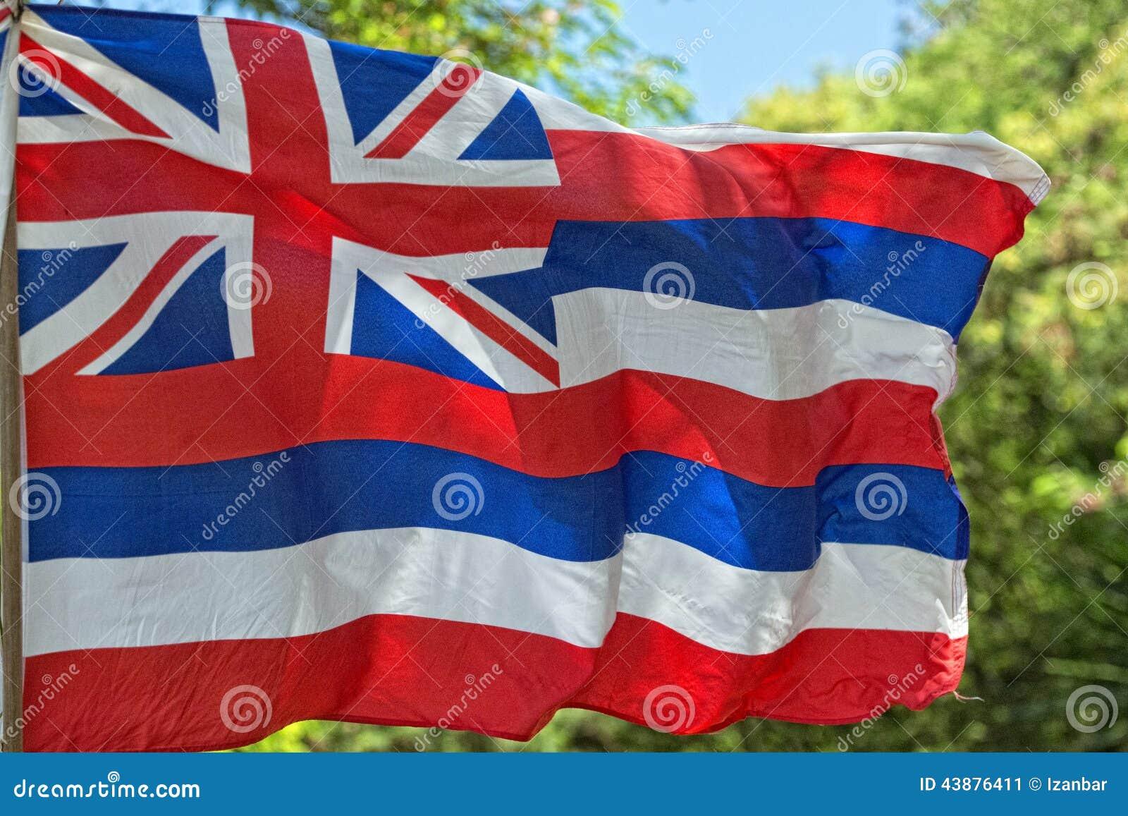 De vlag van Hawaï het weven